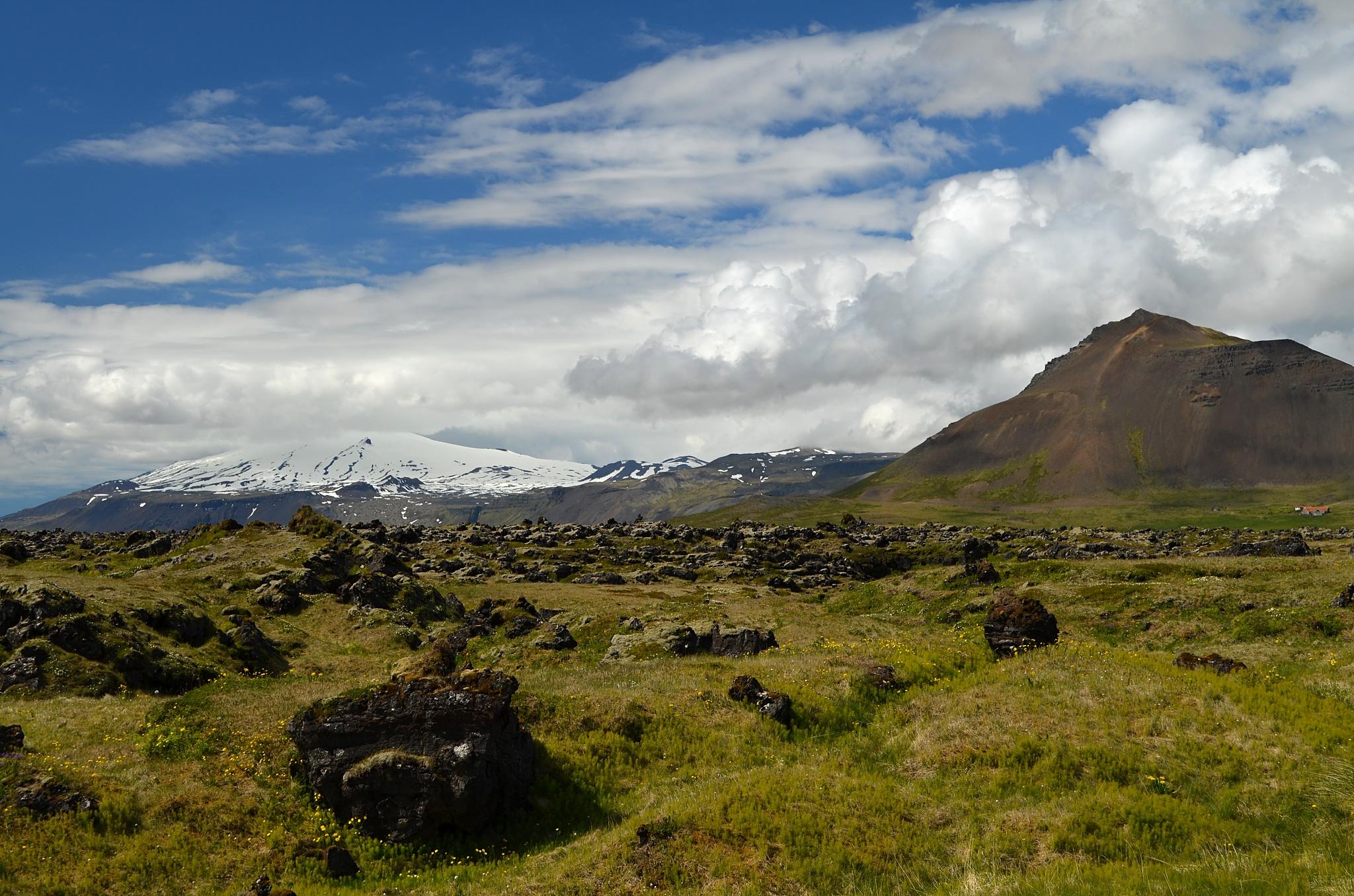 Okolí Búðiru s ledovcem Snæfellsjökull v pozadí.