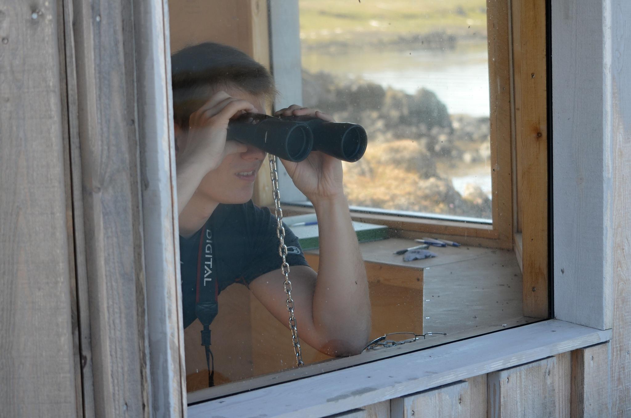 Přístřešek pro sledování tuleňů