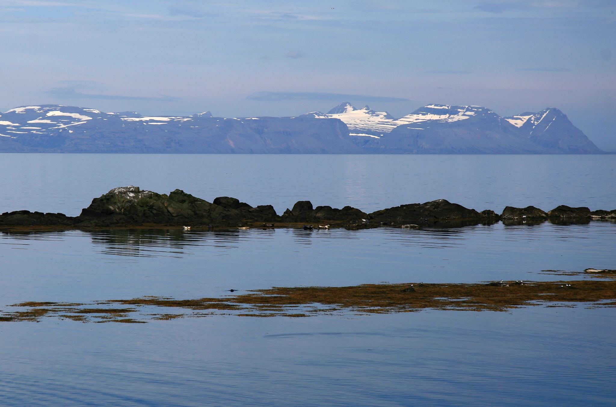 Skály, kde se vyhřívají tuleni