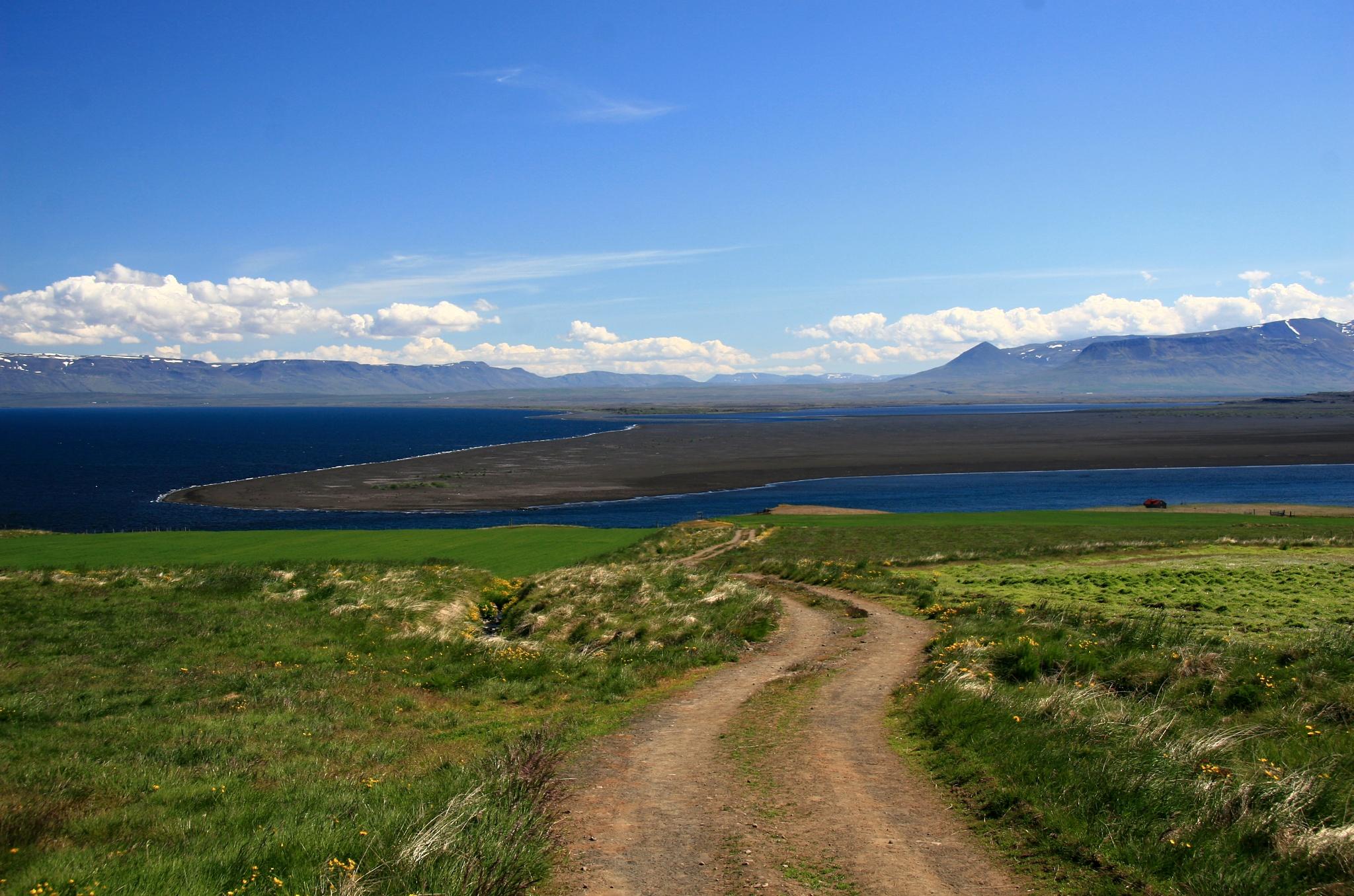 Cestička na pobřeží, odkud snad uvidíme tuleně