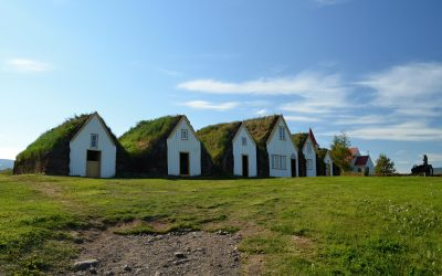 Válející se tuleni, kostelík v Þingeyraru a večeře v Akureyri