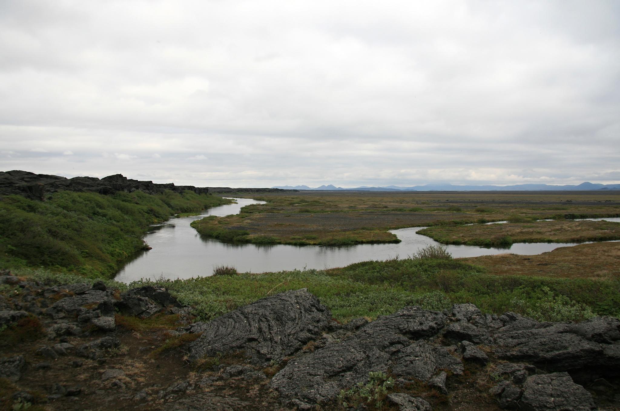 Meandr řeky