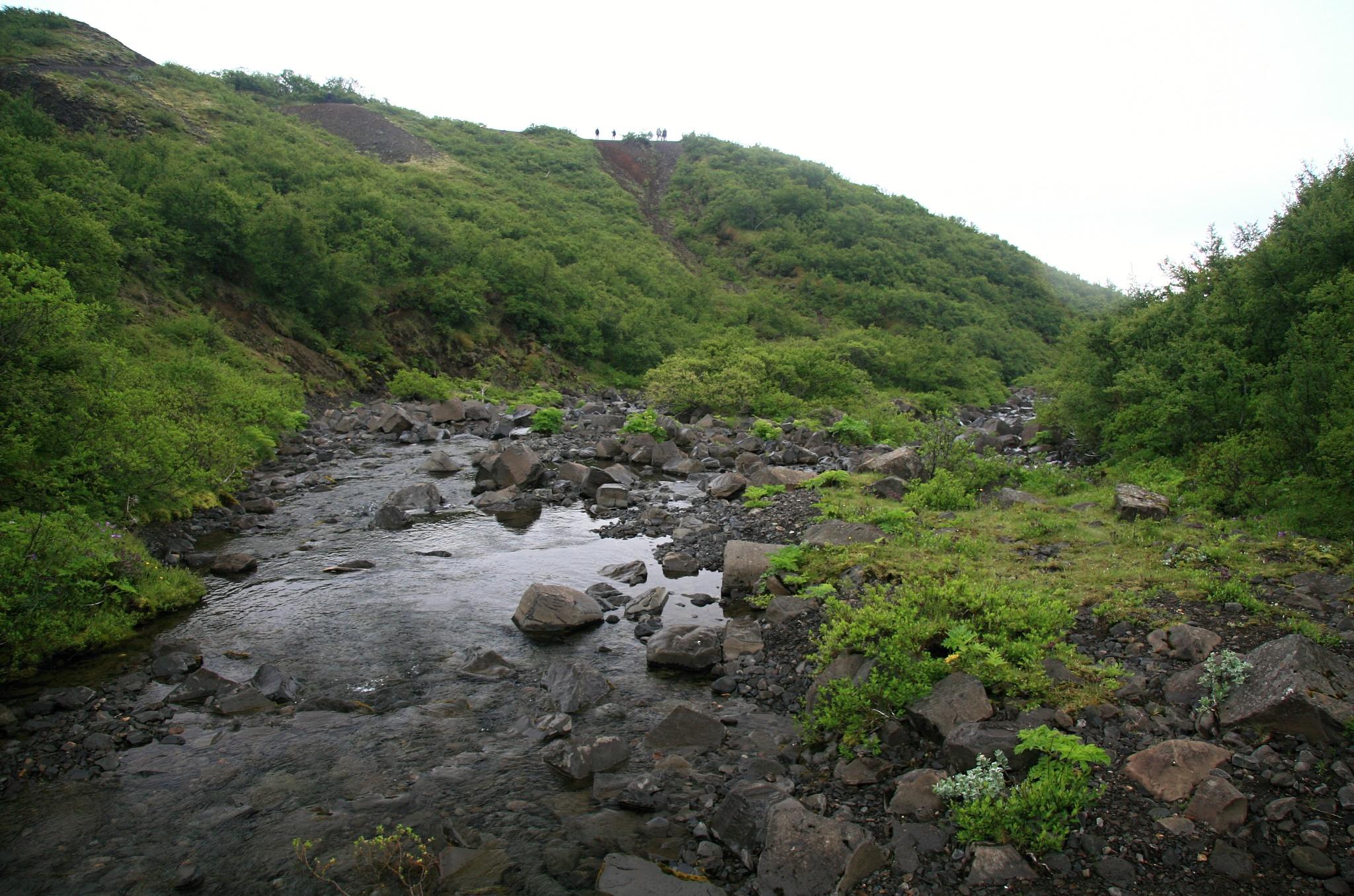 Voda odtékající od vodopádu Svartifoss