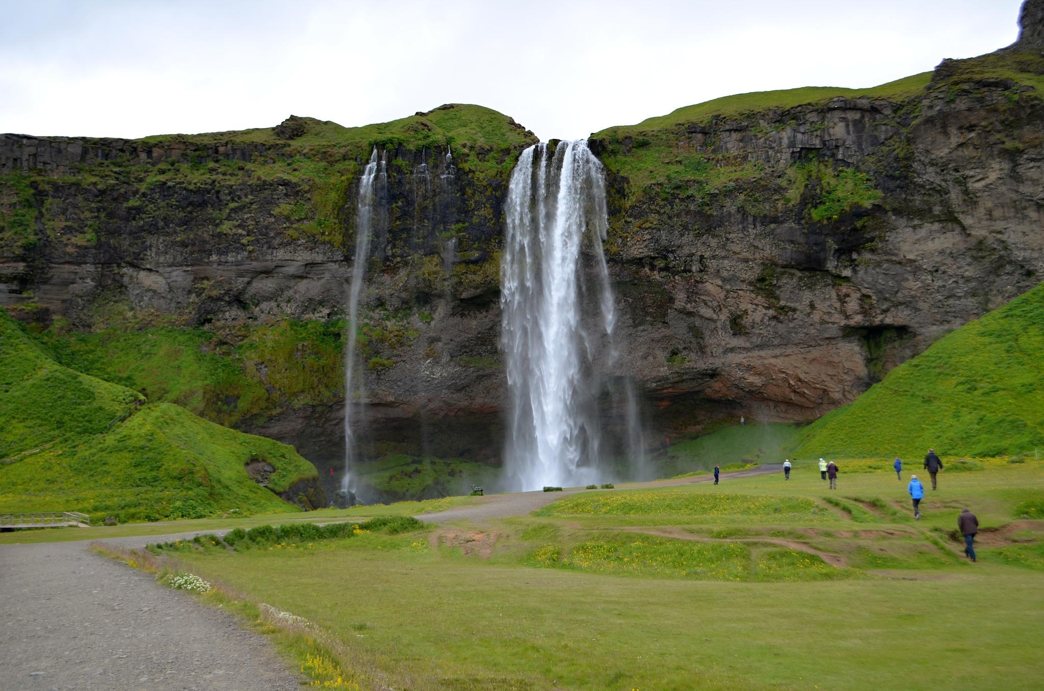 Zastávka u vodopádu Seljalandfoss