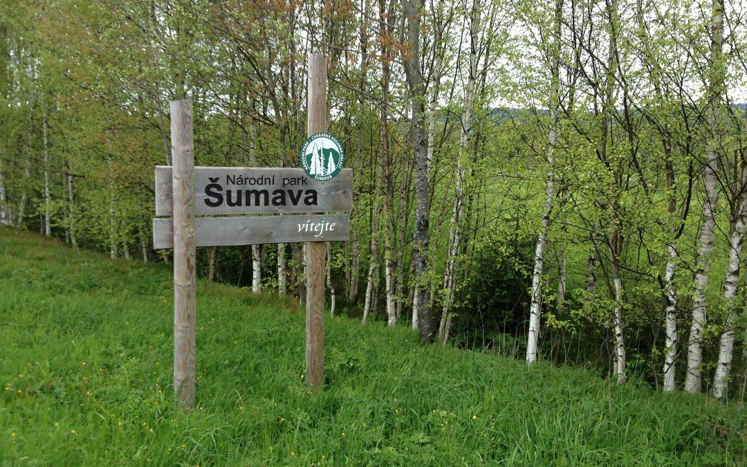 Mapování Šumavy před druhou Horskou výzvou 2013