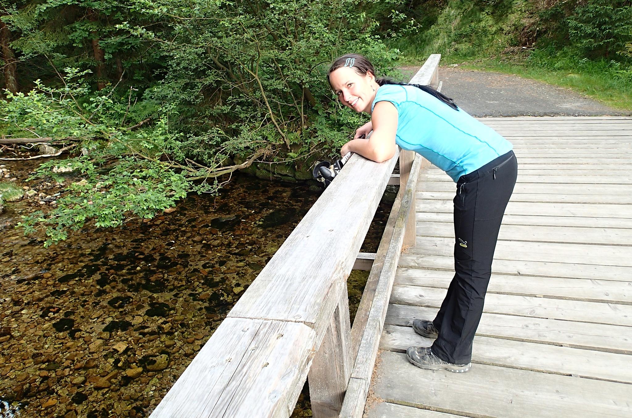 Dřevěný mostek přes Labe