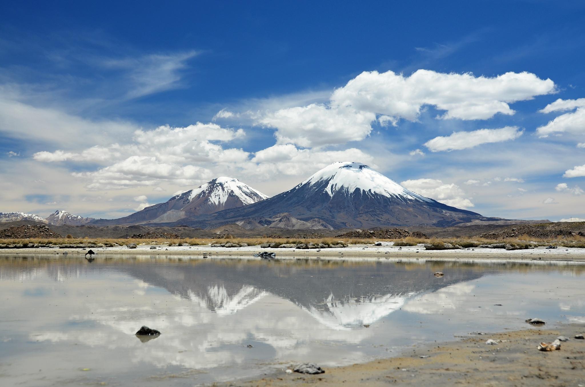 Sopky Parinacota a Pomerape lesknoucí se v jezeře Cotacotani