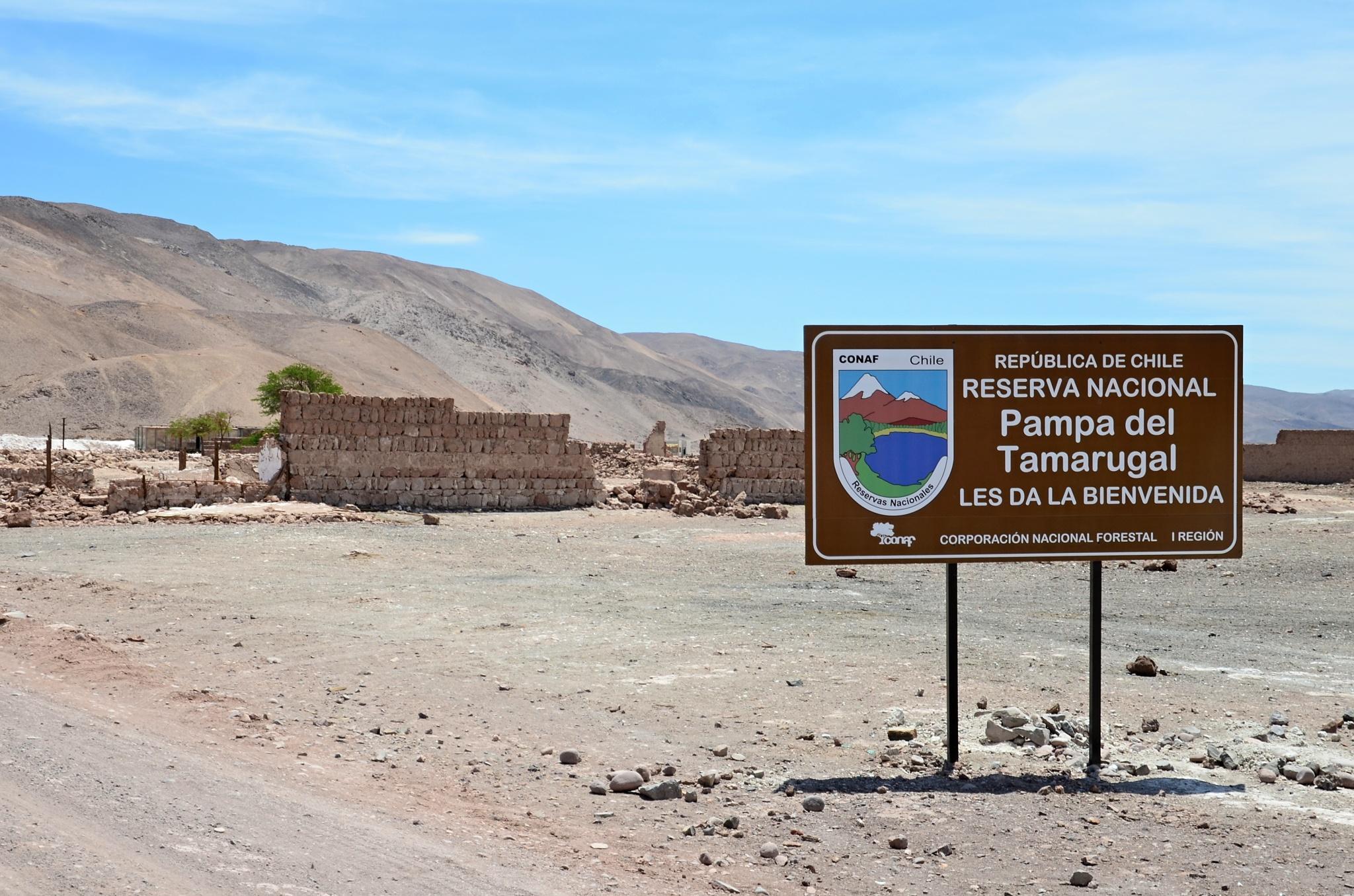 Příjezd do Národní rezervace Pampa del Tamarugal