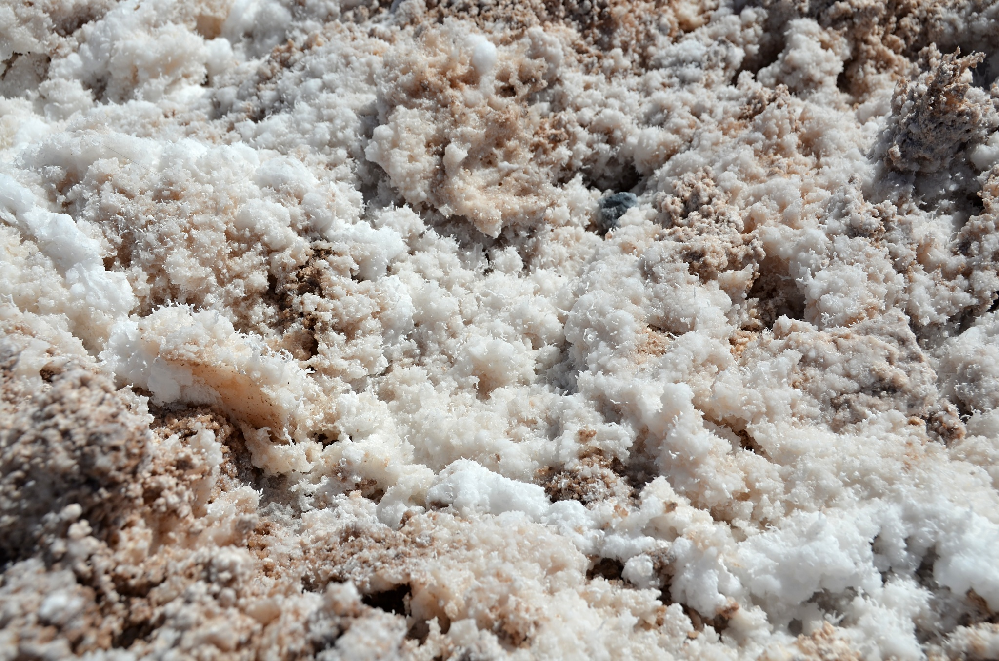 Krystaly soli