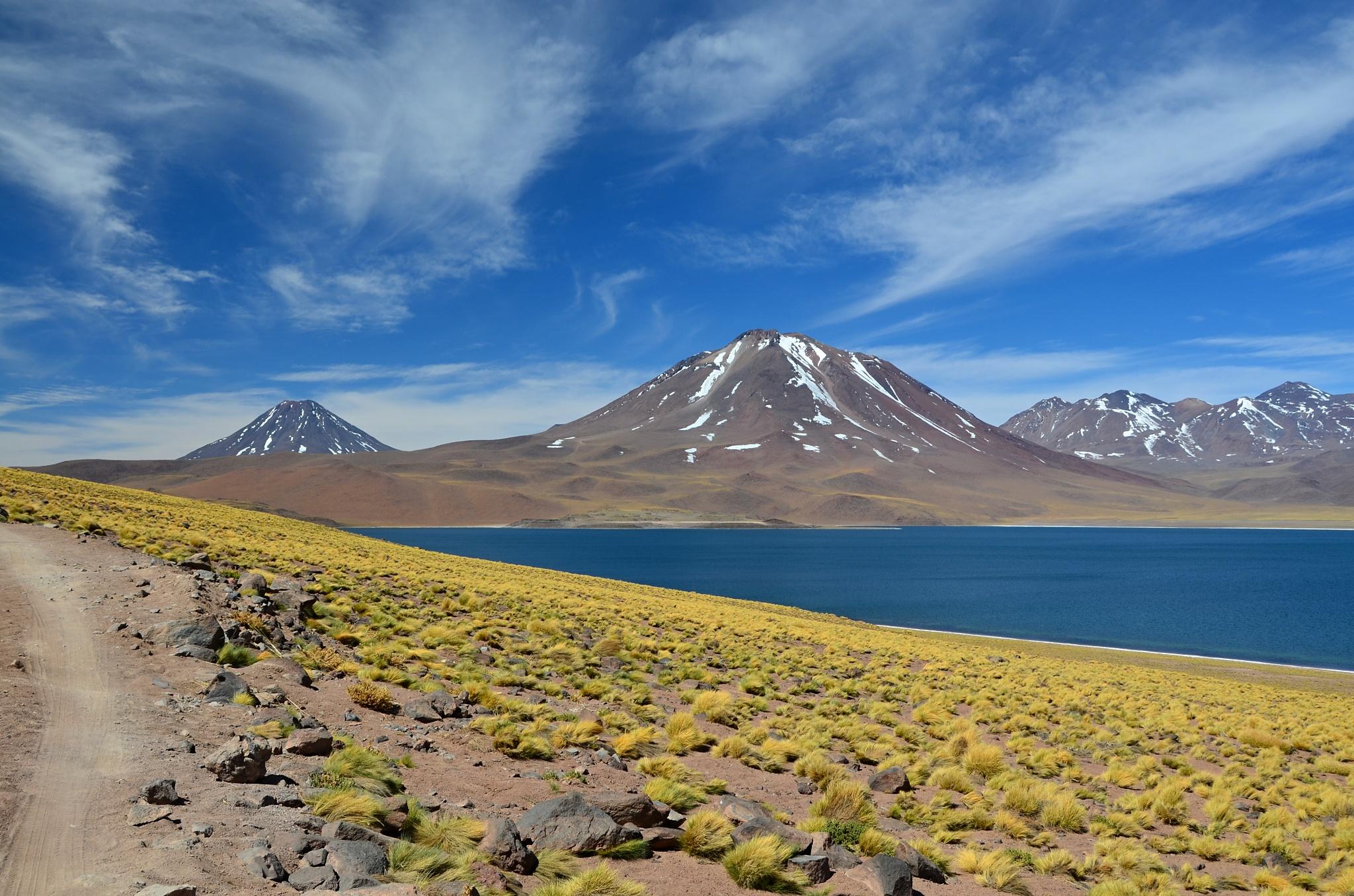 Jezero Miscanti se stejnojmennou horou v pozadí