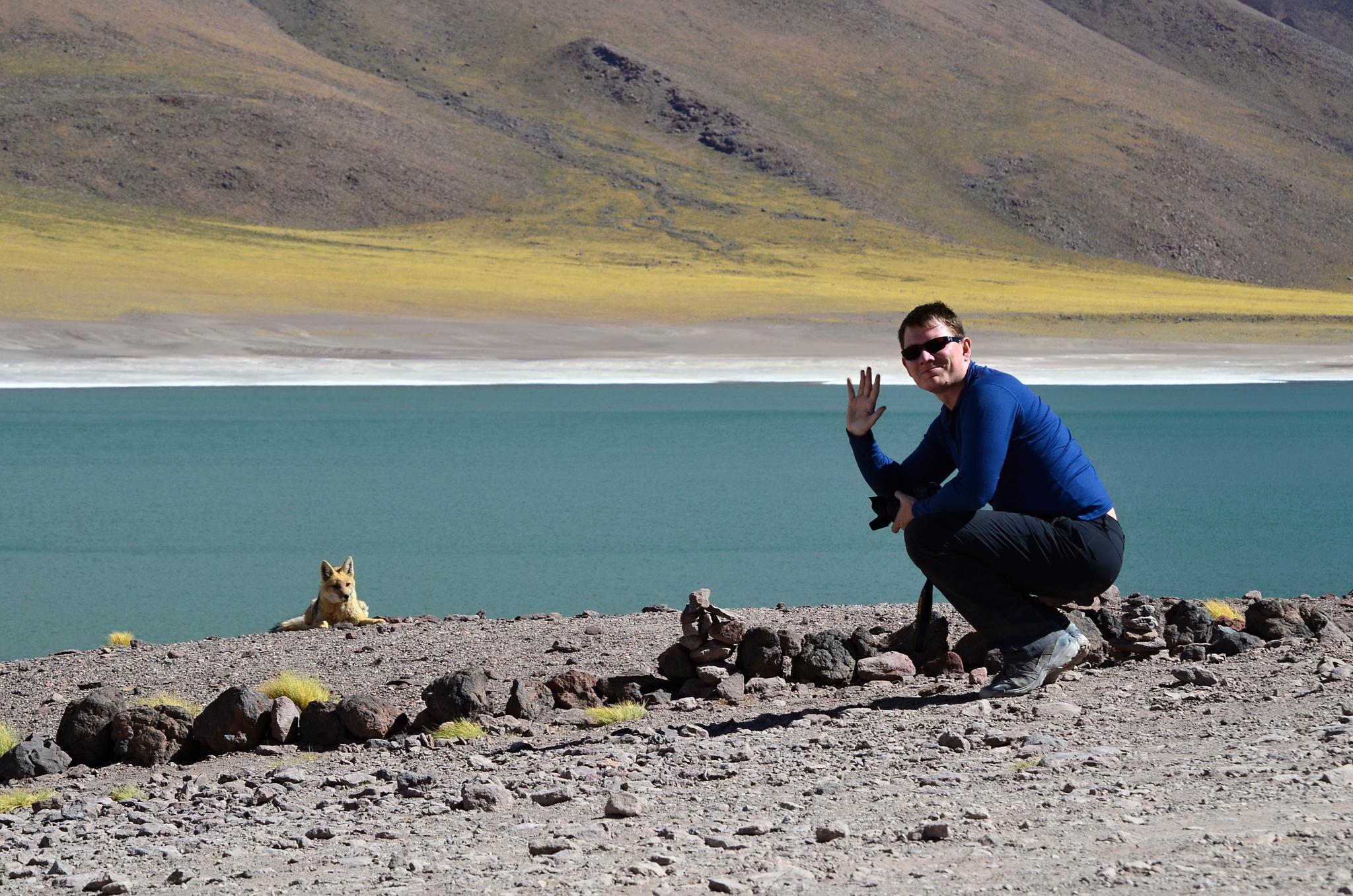 Já a Patagonská liška
