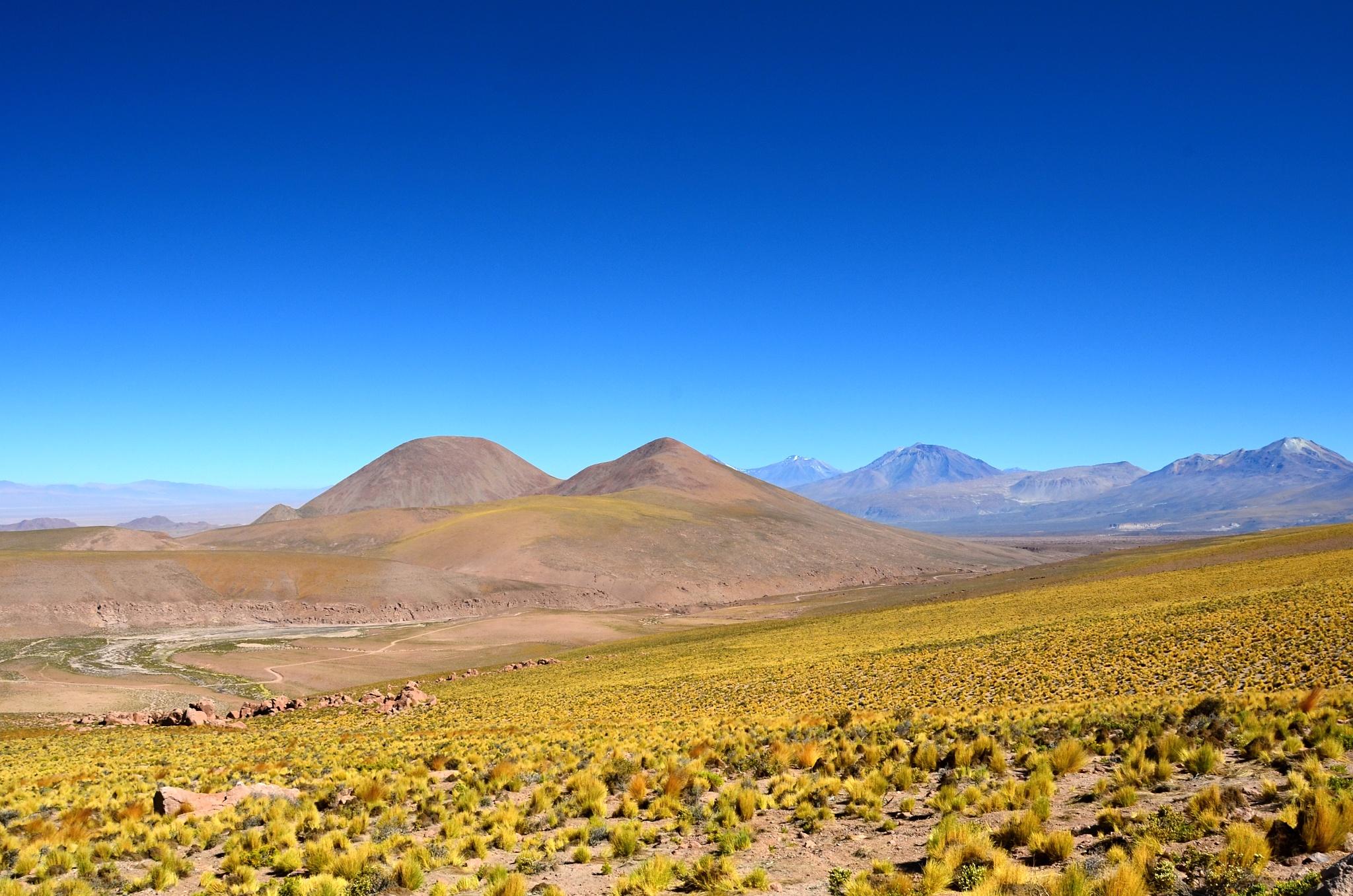 Překrásná kombinace hnědých hor, žluté trávy a modré oblohy
