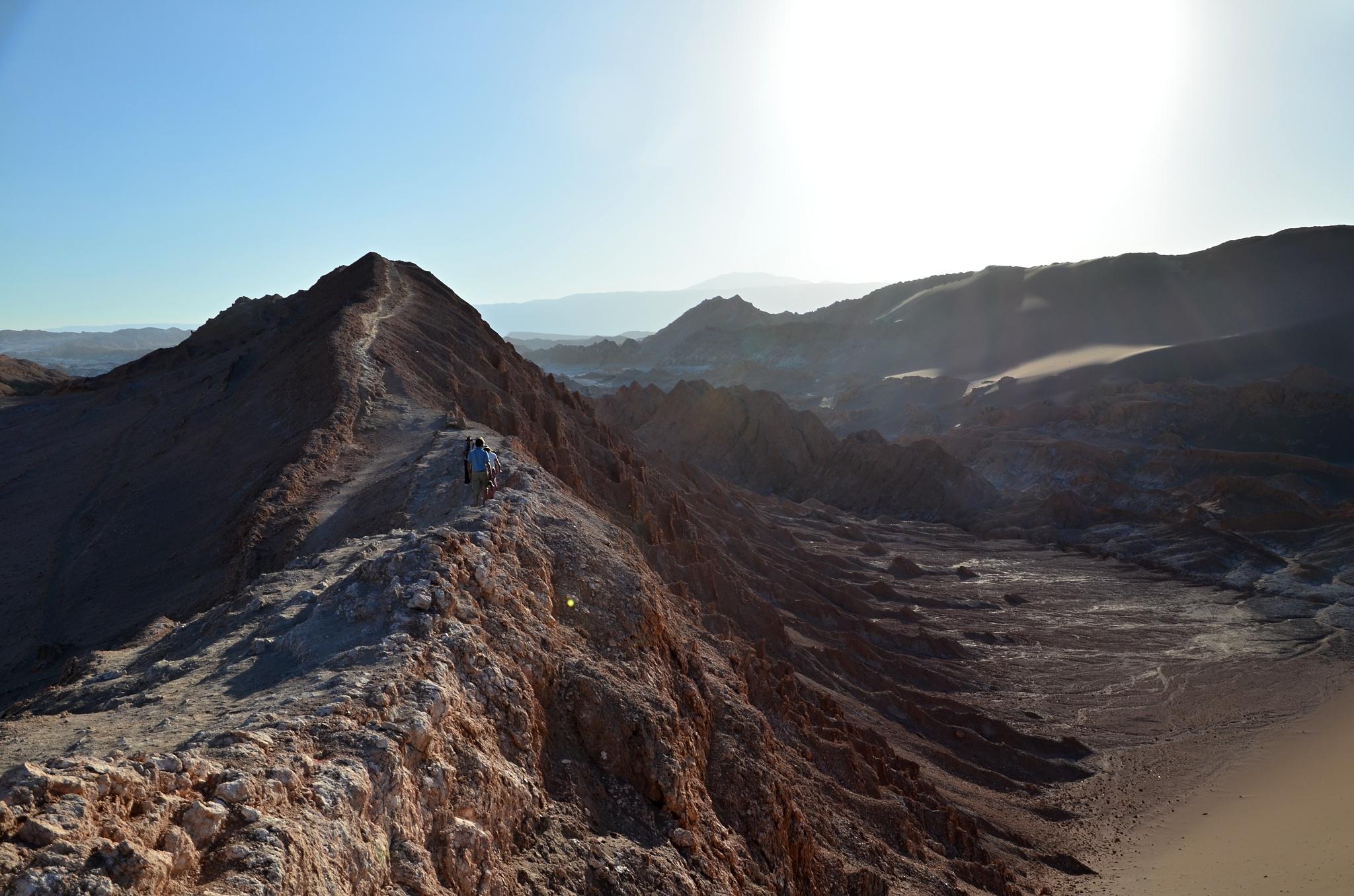 Horský hřebínek u duny