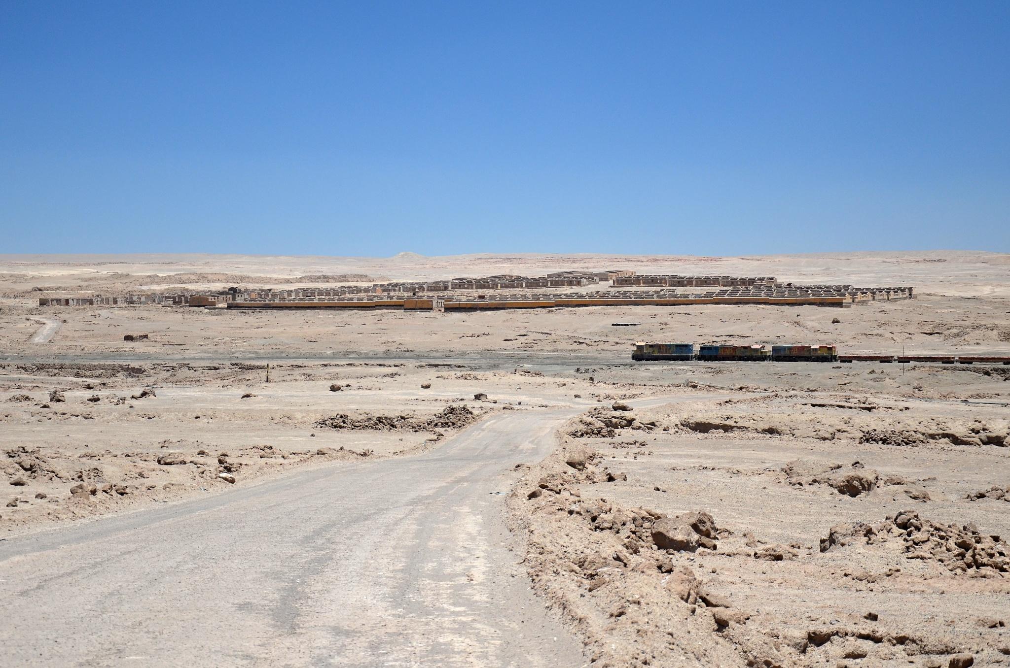 Továrna na zpracování ledku Francesco Puelma a u ní dlouhý vlak