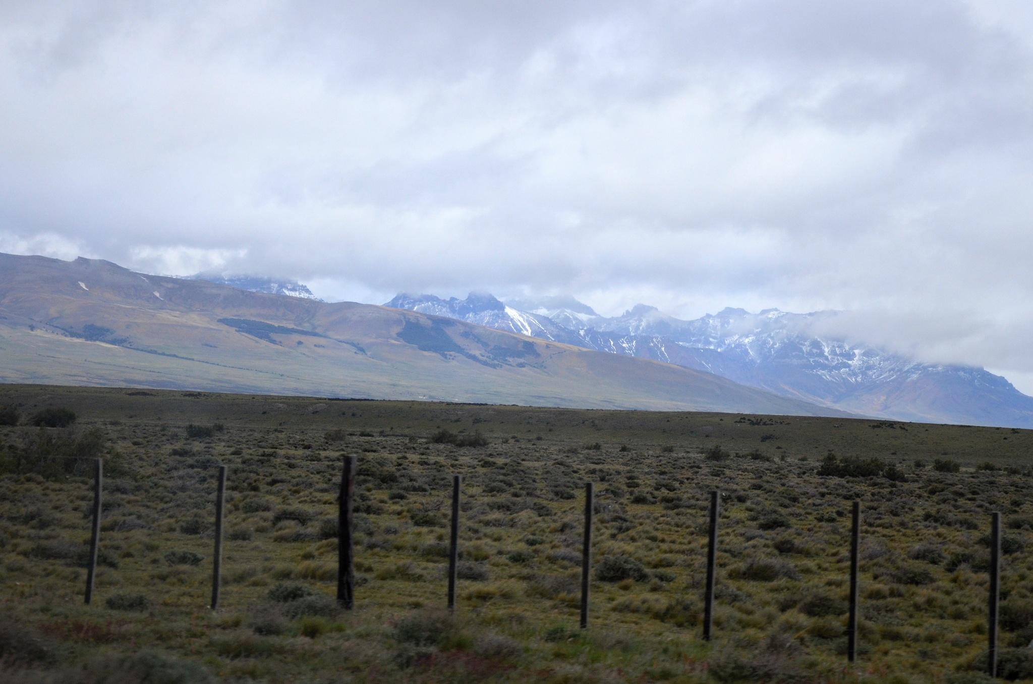 Pastviny kolem silnice