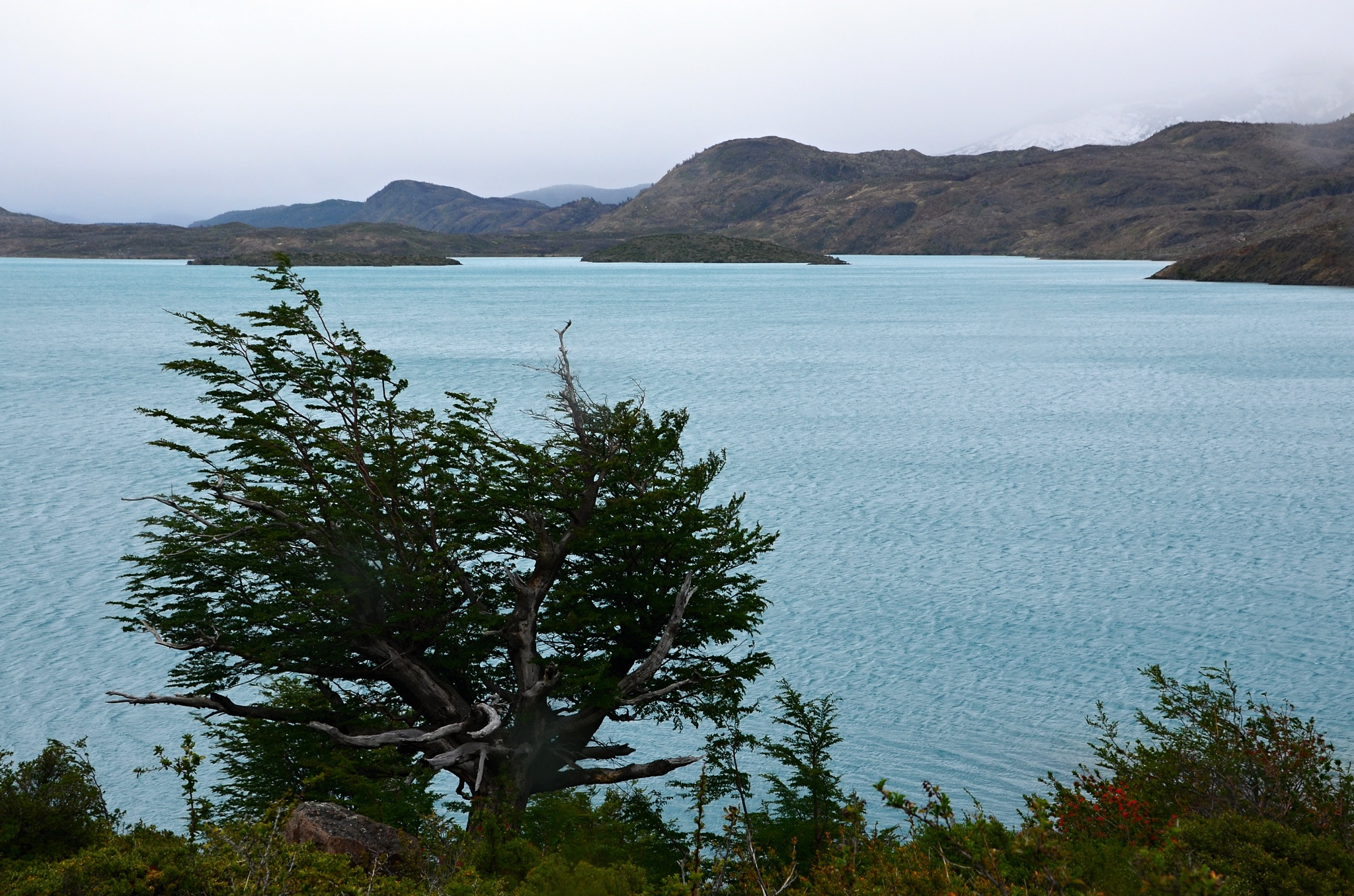 Pohled na jezero Pehoé