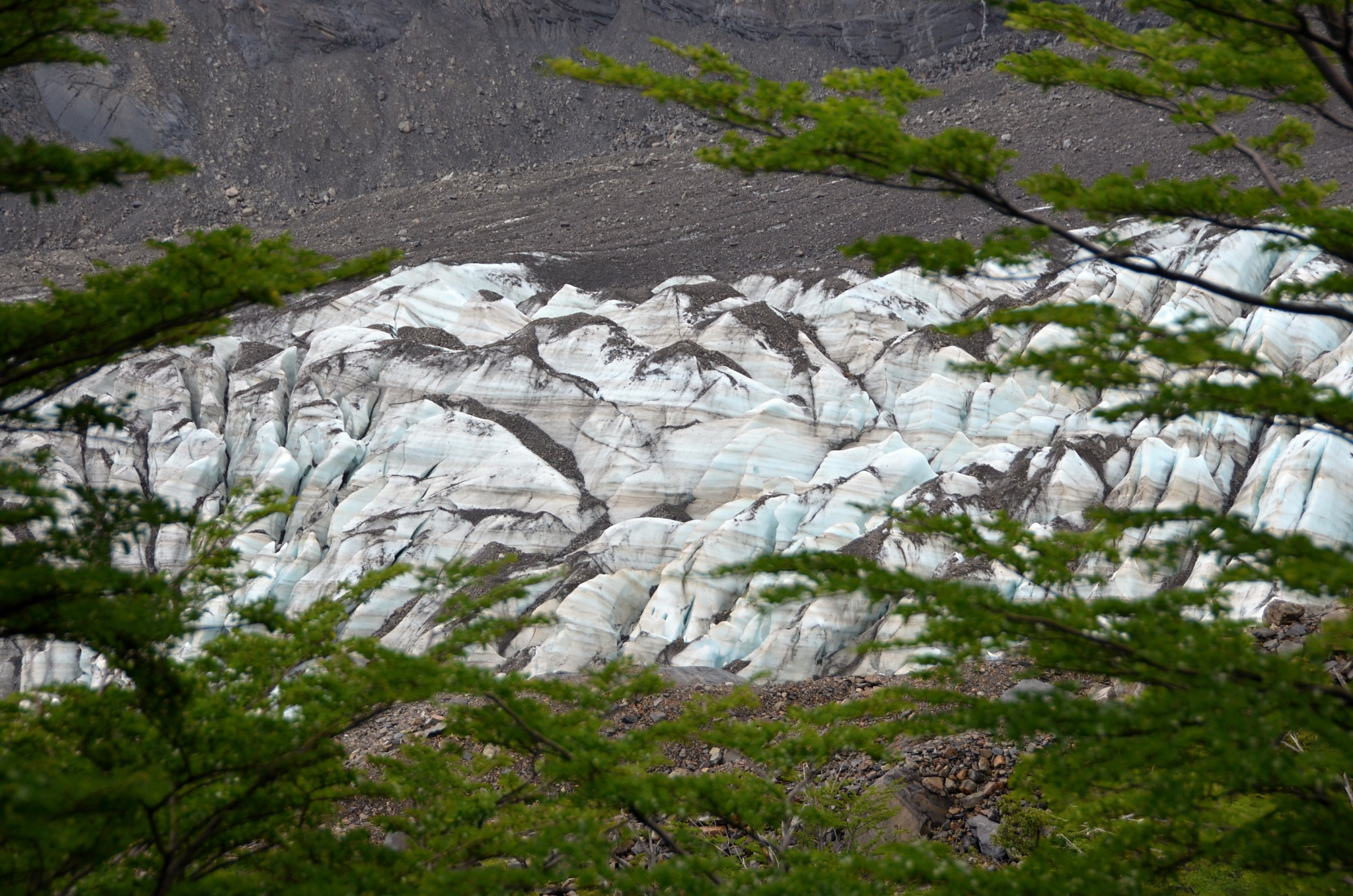 Čelo ledovce Francés