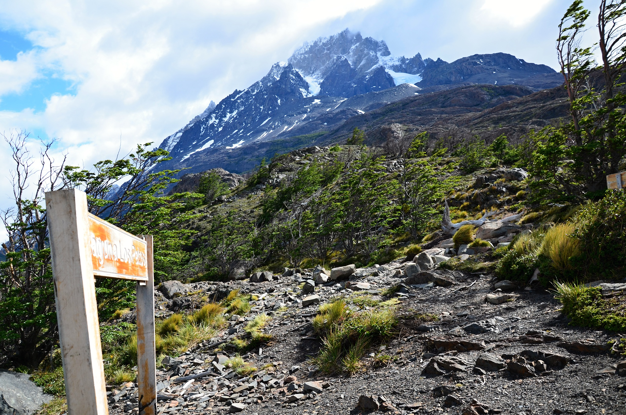 Jezírko Los Patos leží pod mohutnou horou Paine Grande