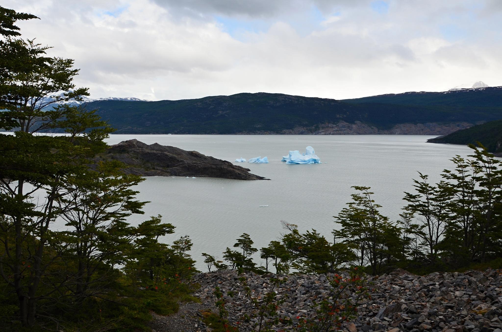 Odlomená kra z ledovce Grey pluje v jezeře Grey