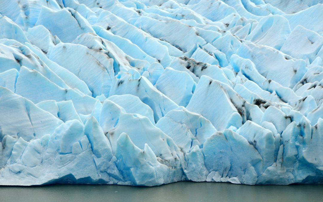 Výlet podél jezera Grey až ke stejnojmennému ledovci