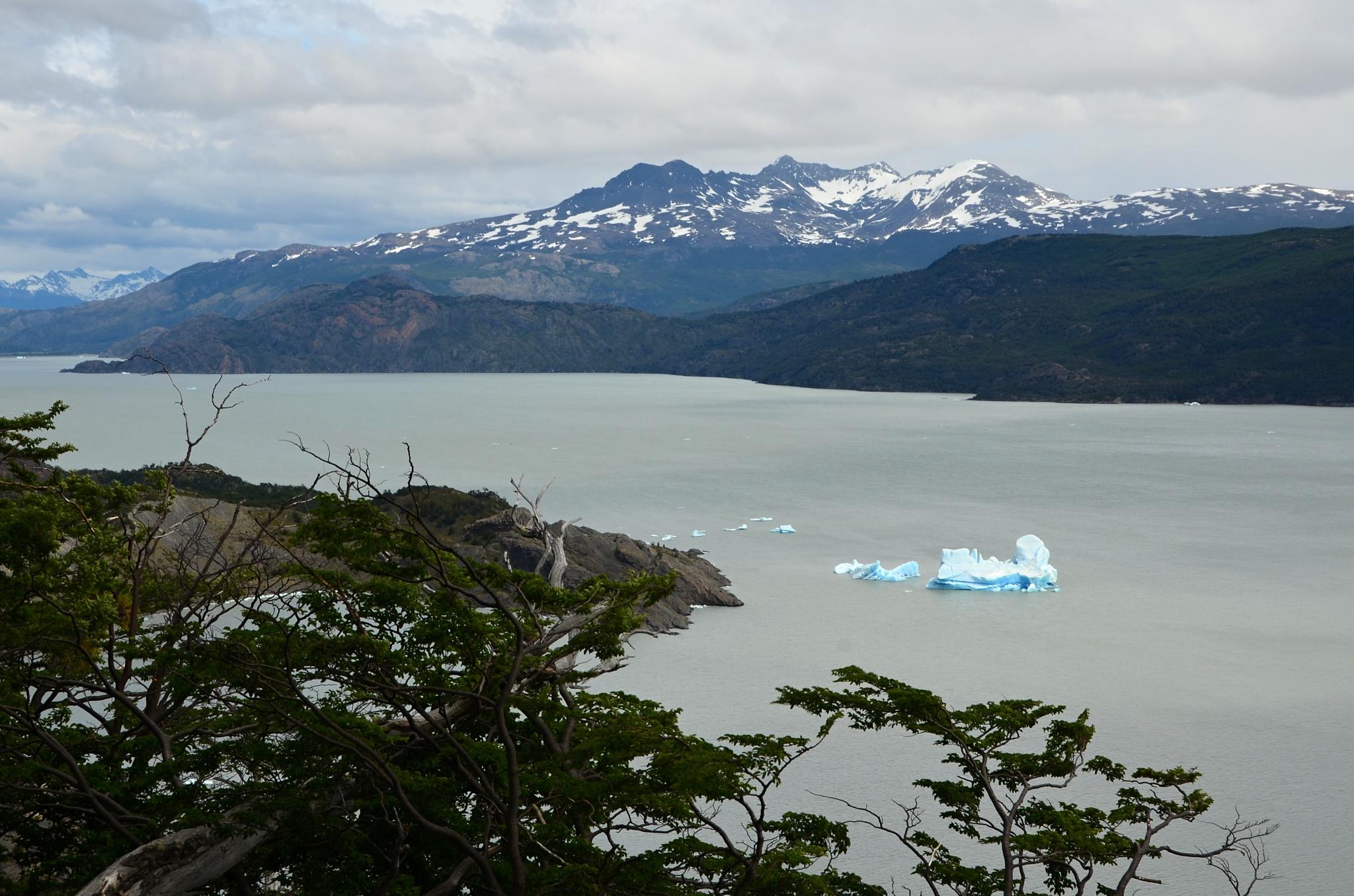 Jezero Grey s krami