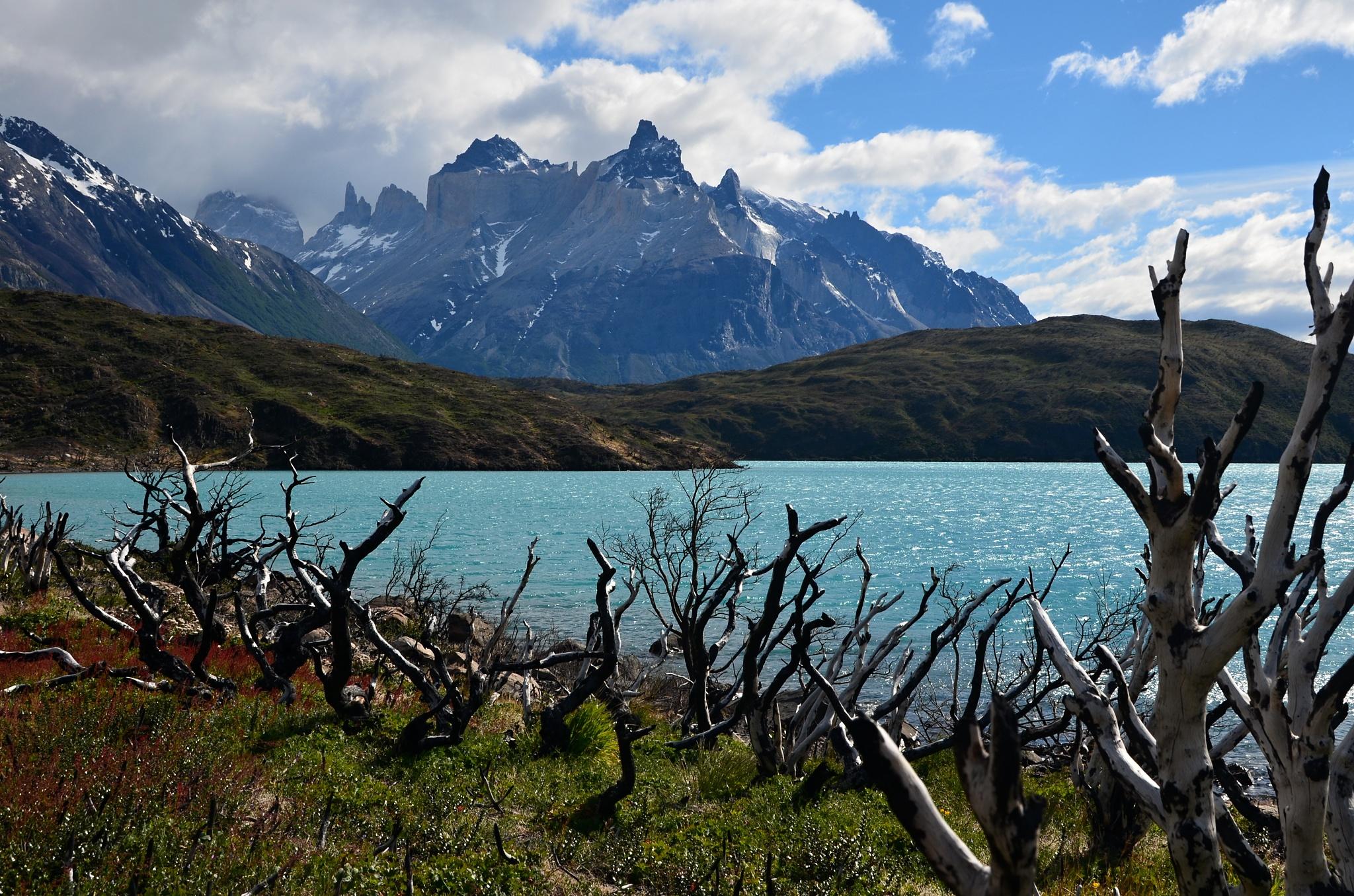 Jezero Pehoé, na pozadí a Cuernos del Paine