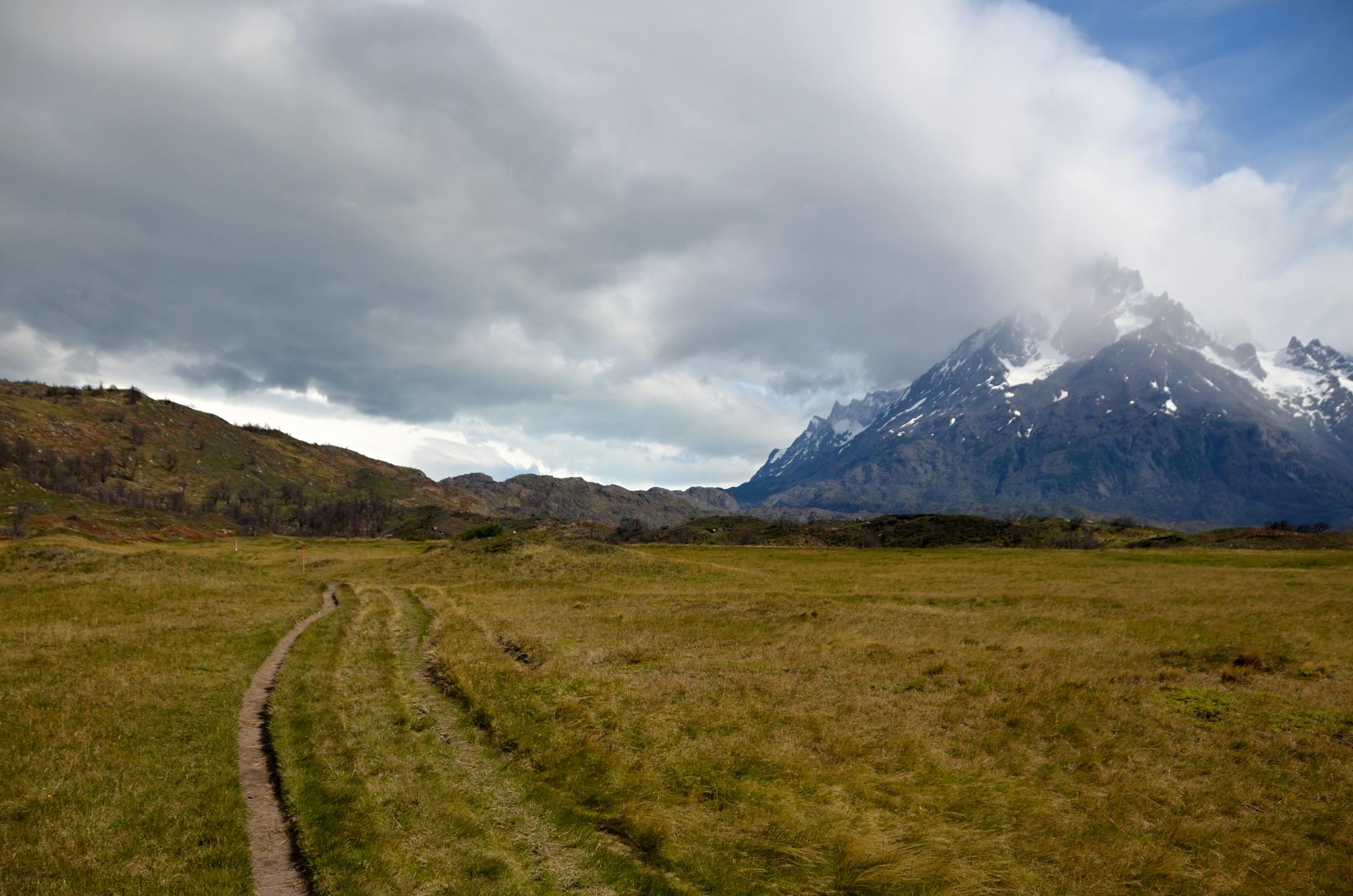 Jihoamerická pampa plná žluté trávy a silného větru. Počasí se horší...