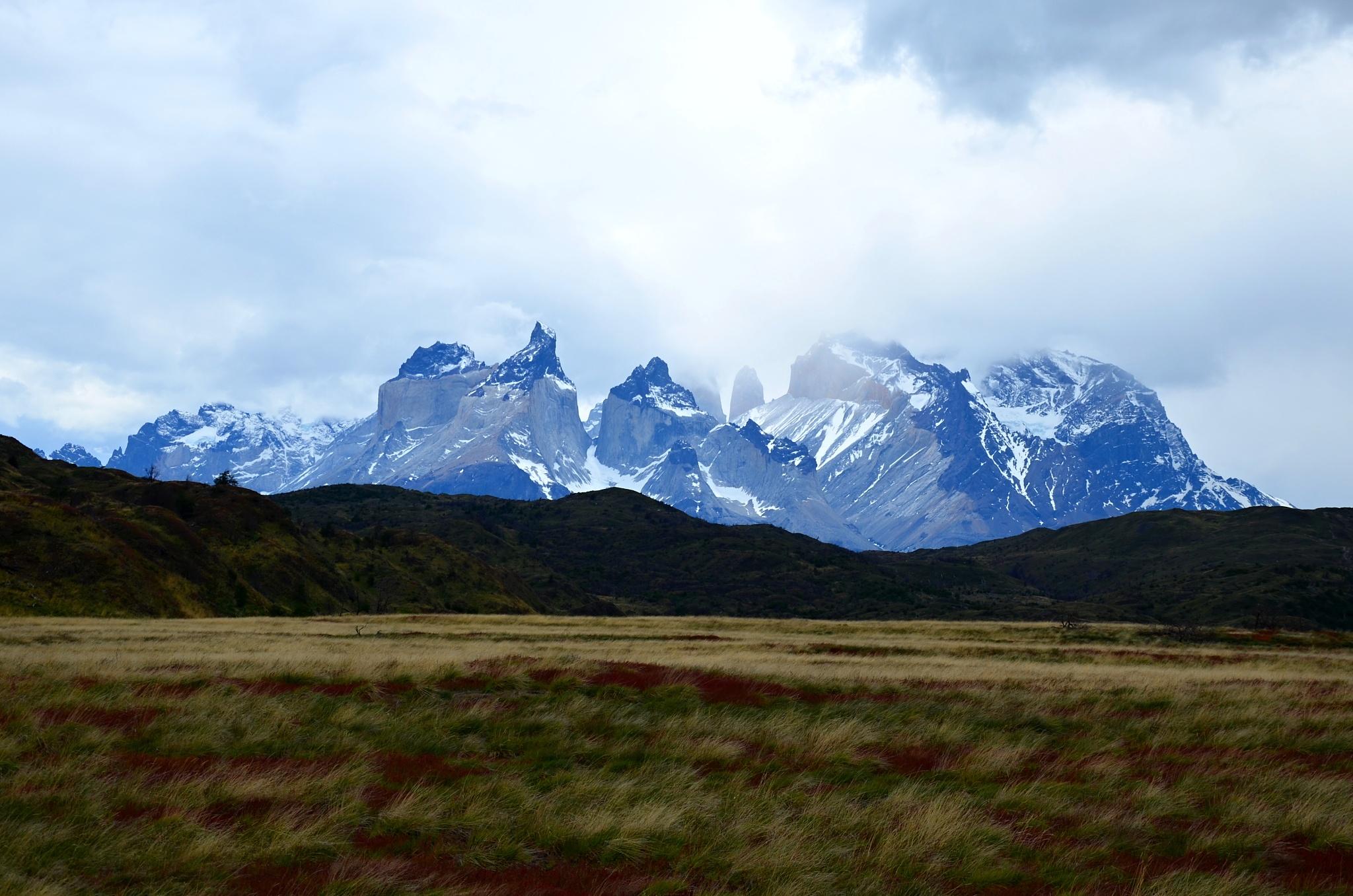 Pampa a v pozadí Cuernos del Paine