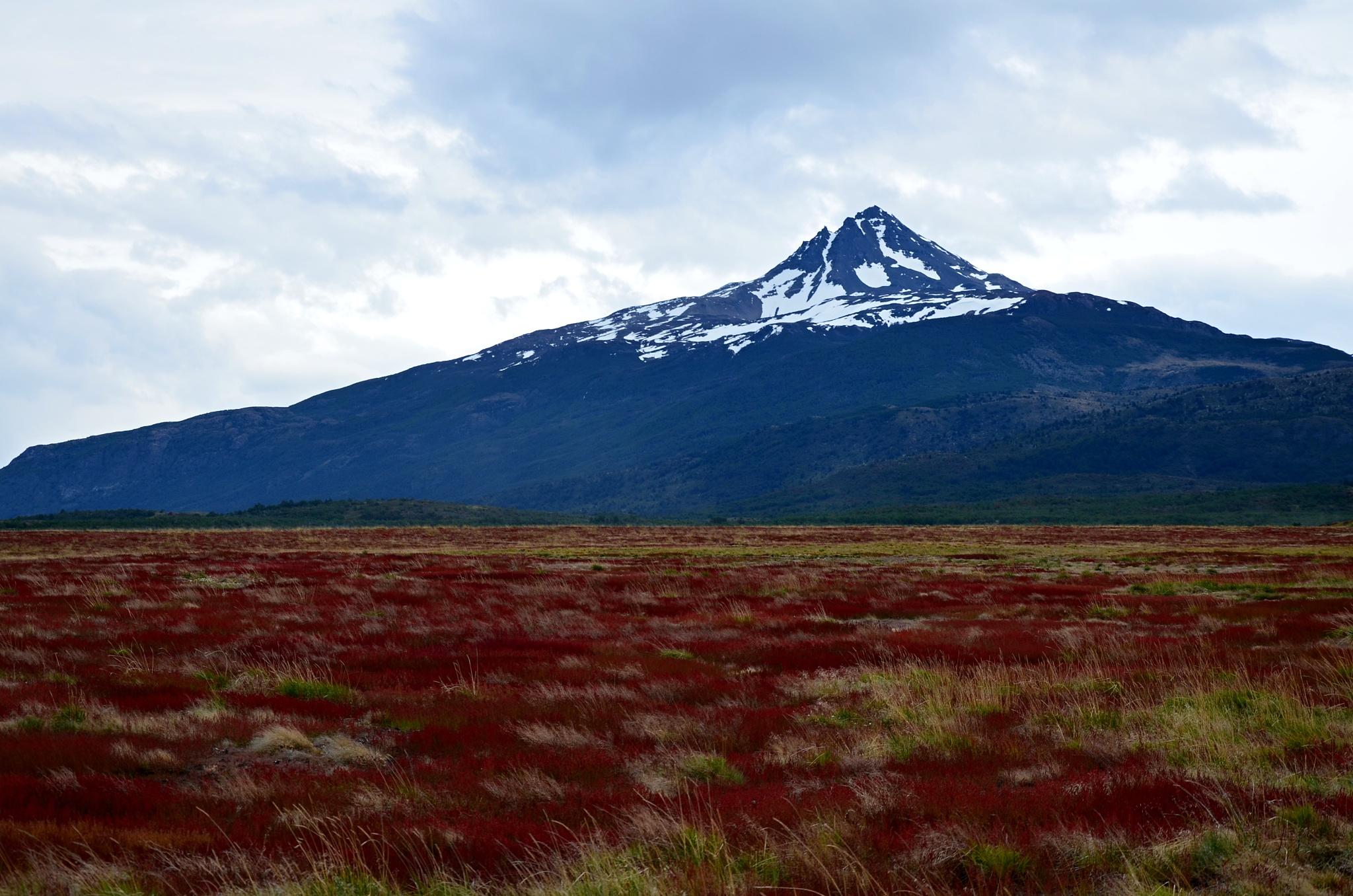 Rezavá tráva se špičatou horou v pozadí