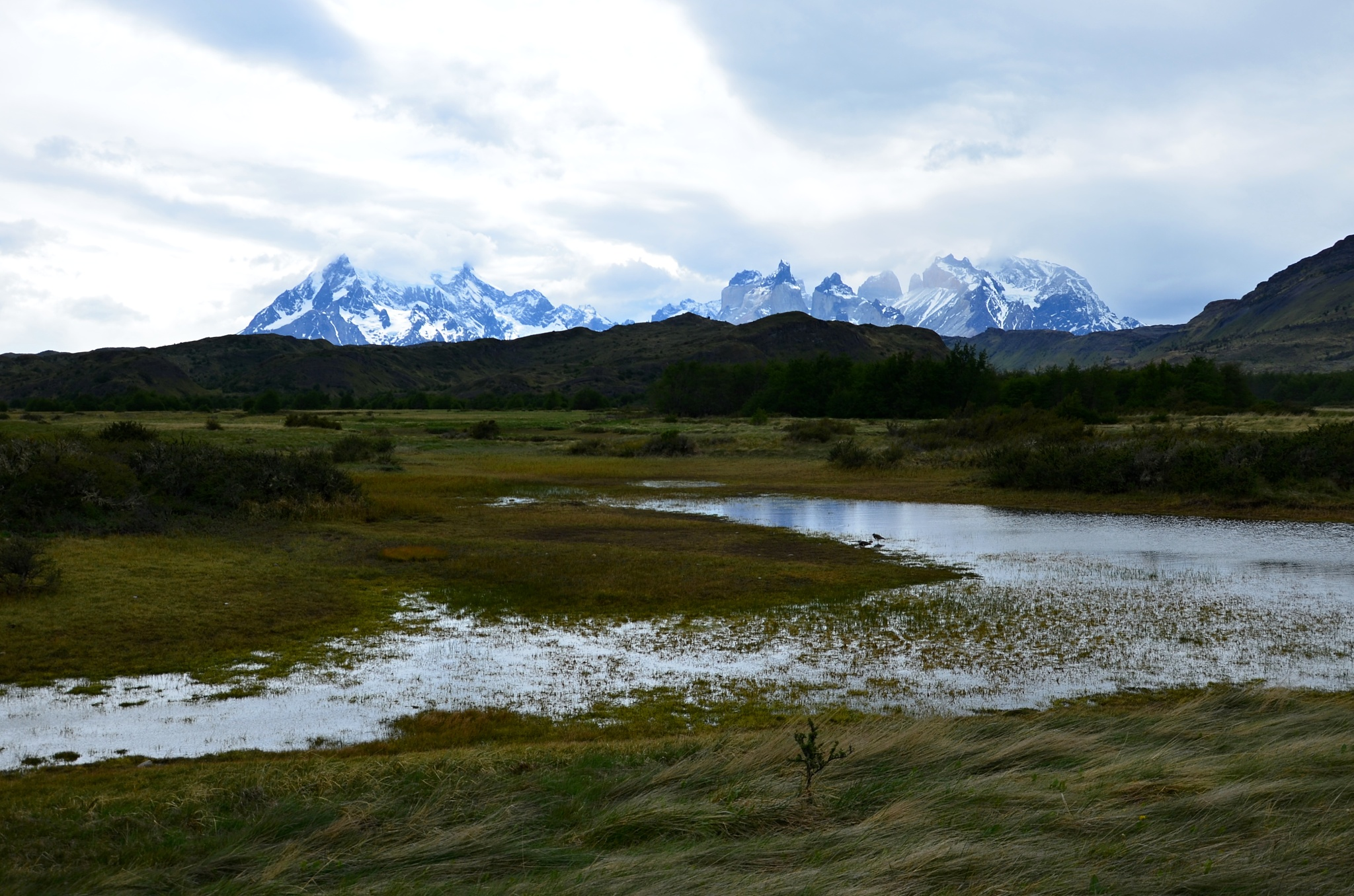 Mokřina a v pozadí Paine Grande a Cuernos del Paine