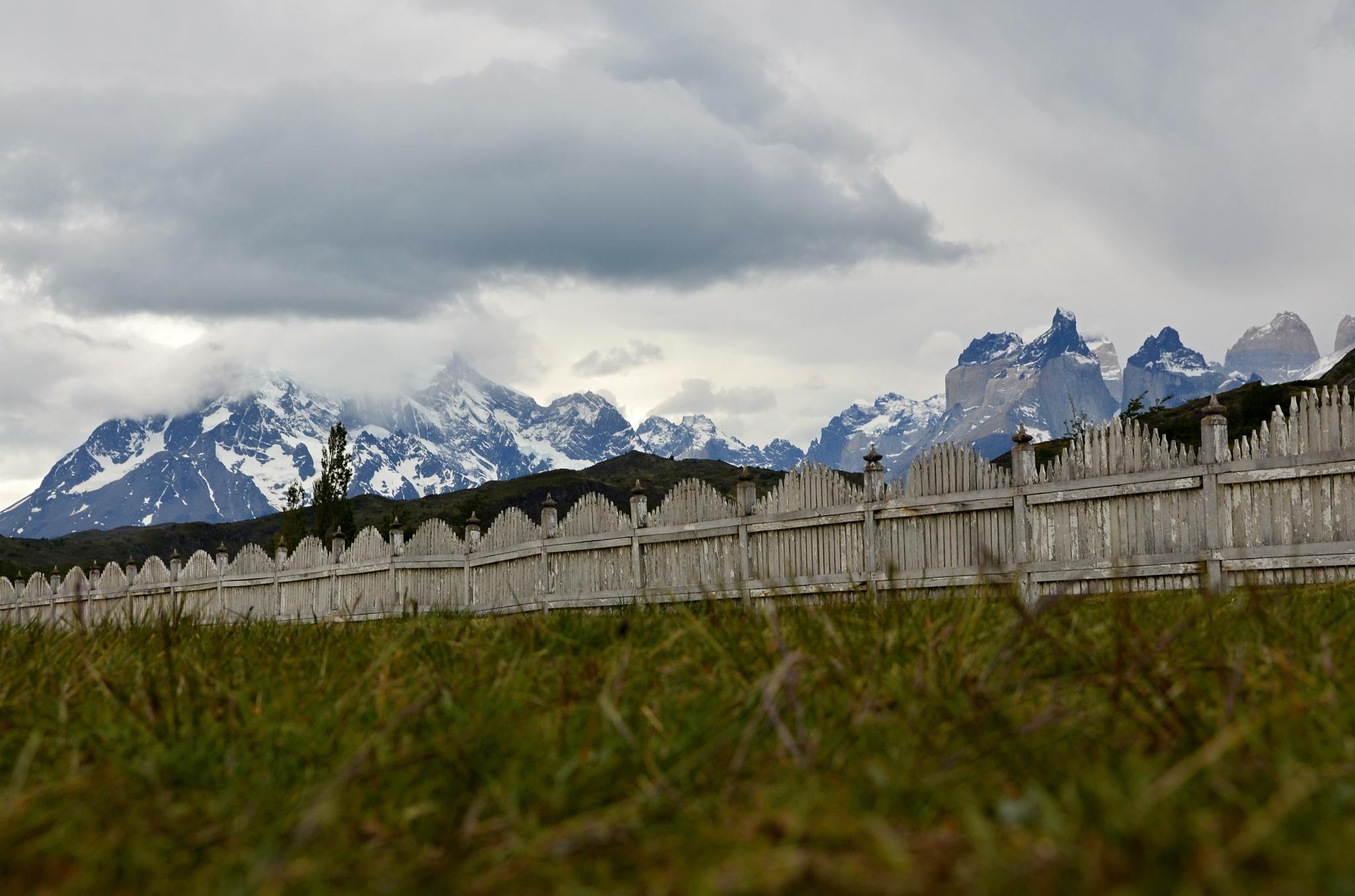 Paine Grande a Cuernos del Paine za plotem