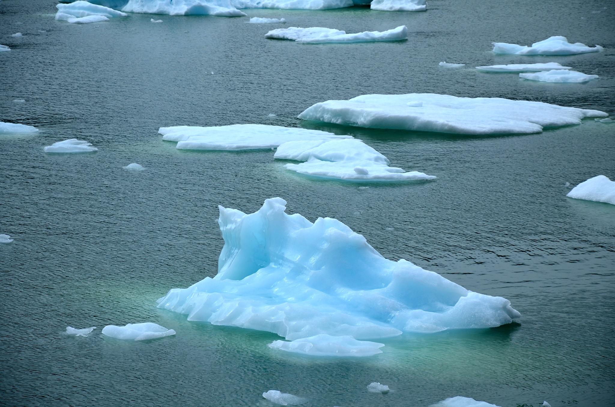 Odlomené kry z ledovce Serrano
