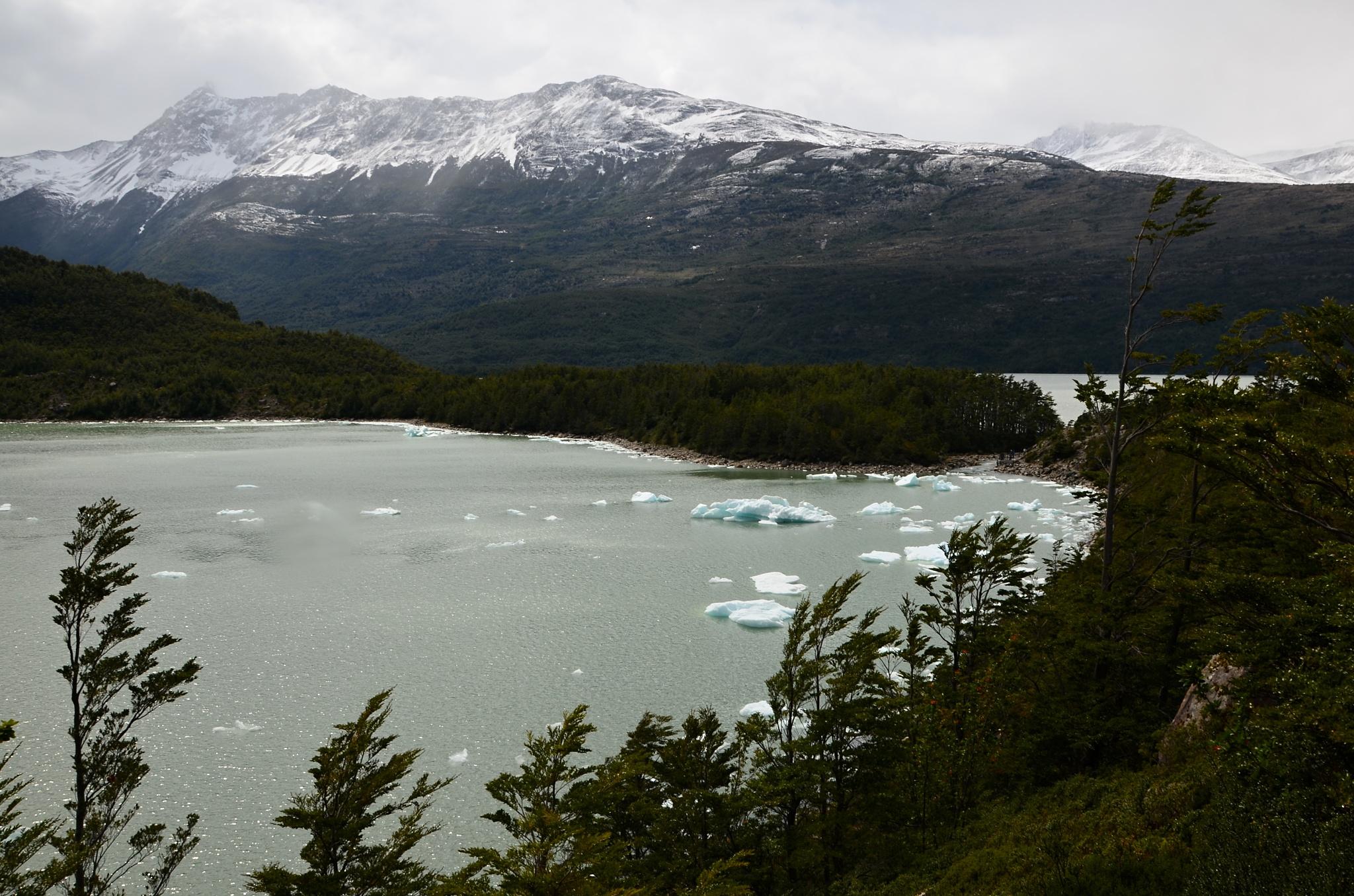 Jezero u ledovce Serrano plné odlomených ker