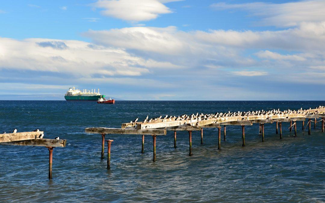 Vracíme se zpět do Punta Arenas