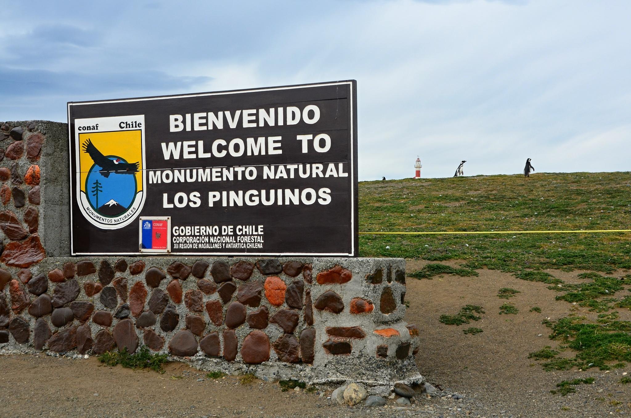 Vítejte!