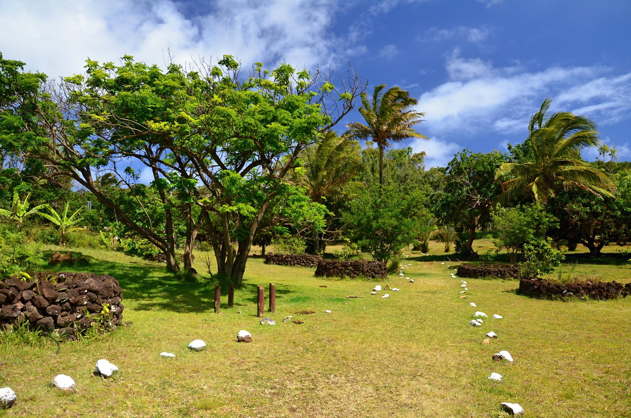 Malý park na Velikonočním ostrově