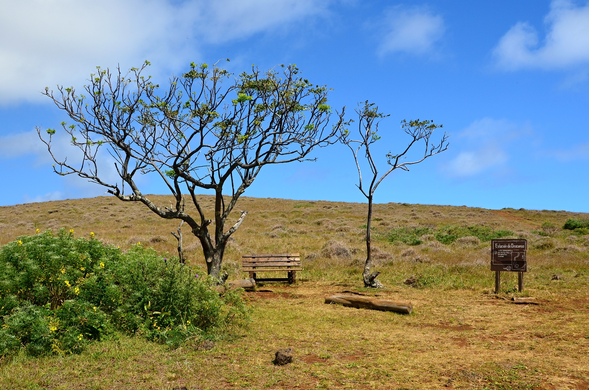 Odpočívadlo na cestě k vrcholu sopky Rano Kau