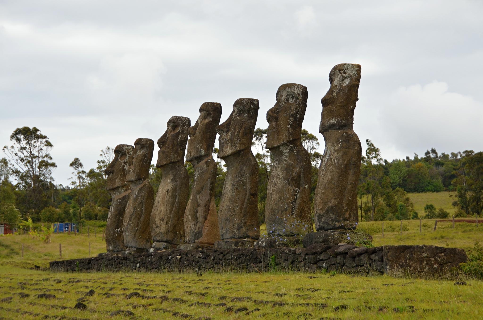 Sedm téměř identických Moai na místě Ahu Akivi