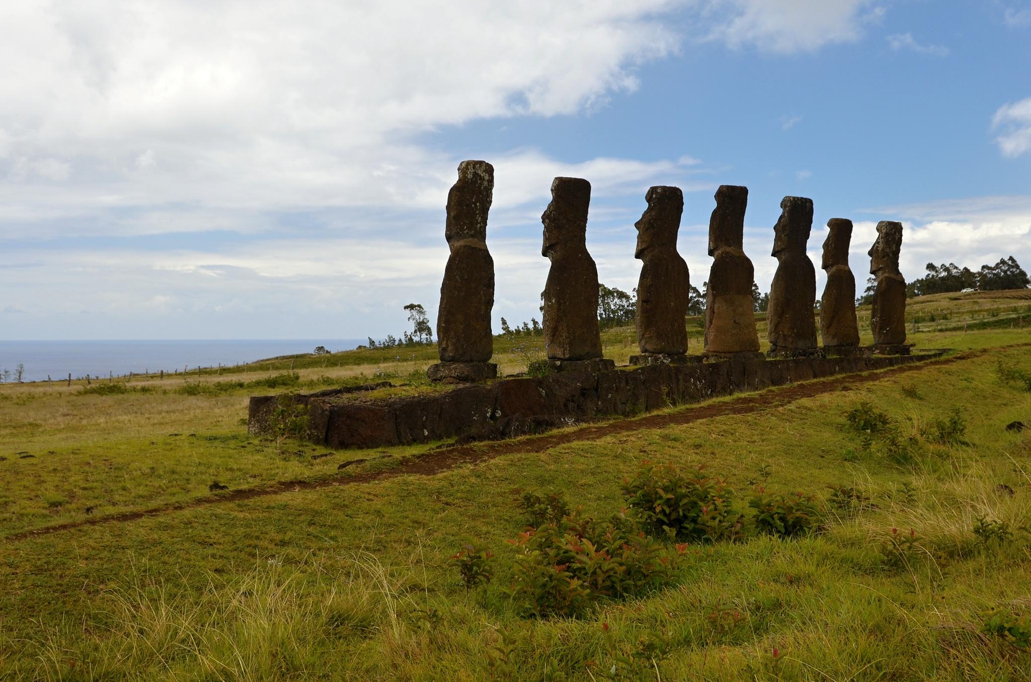 Moai na Ahu Akivi hledí na rozdíl od všech ostatních na ostrově na moře