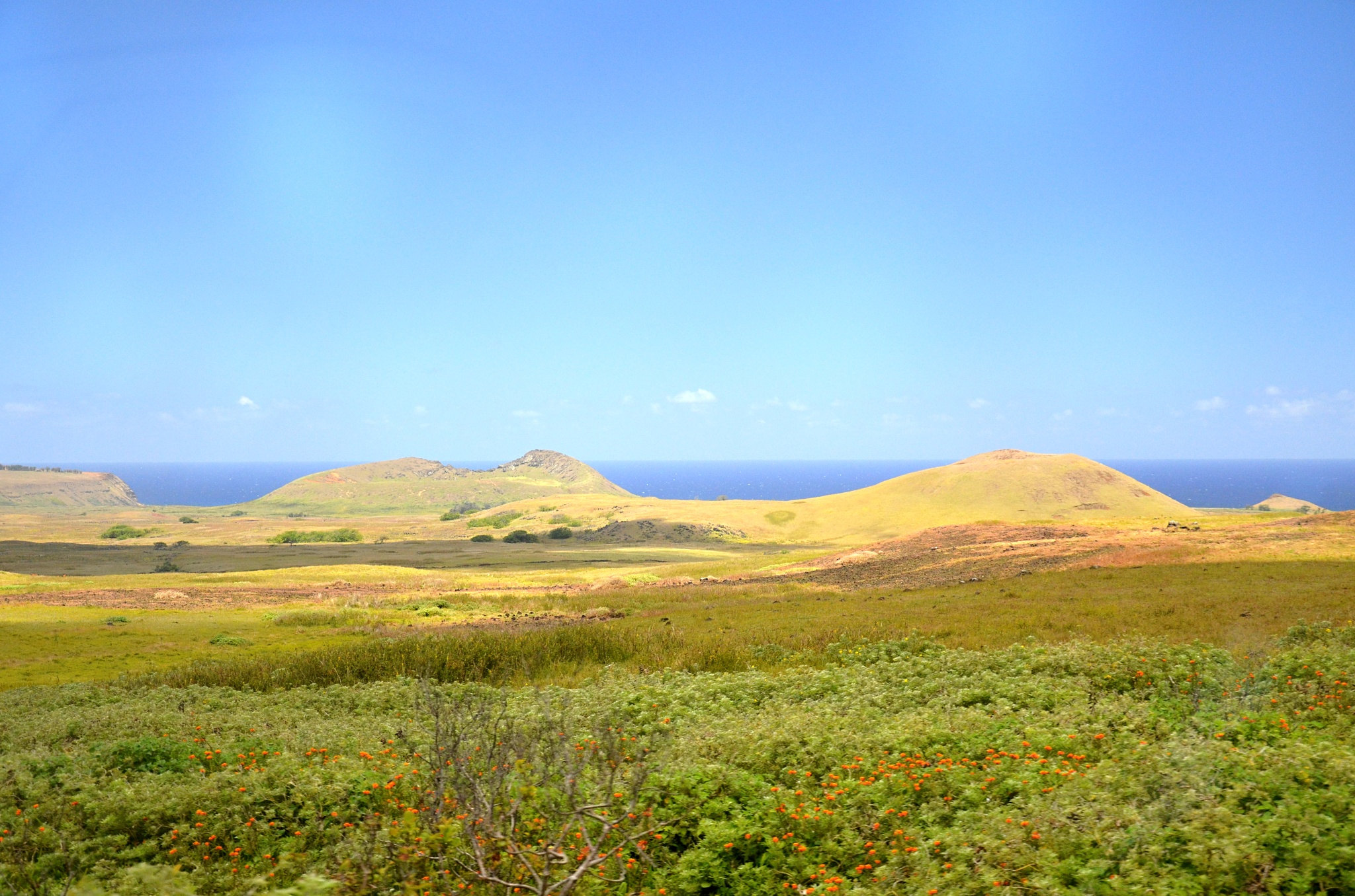 Kopečky na severním pobřeží ostrova