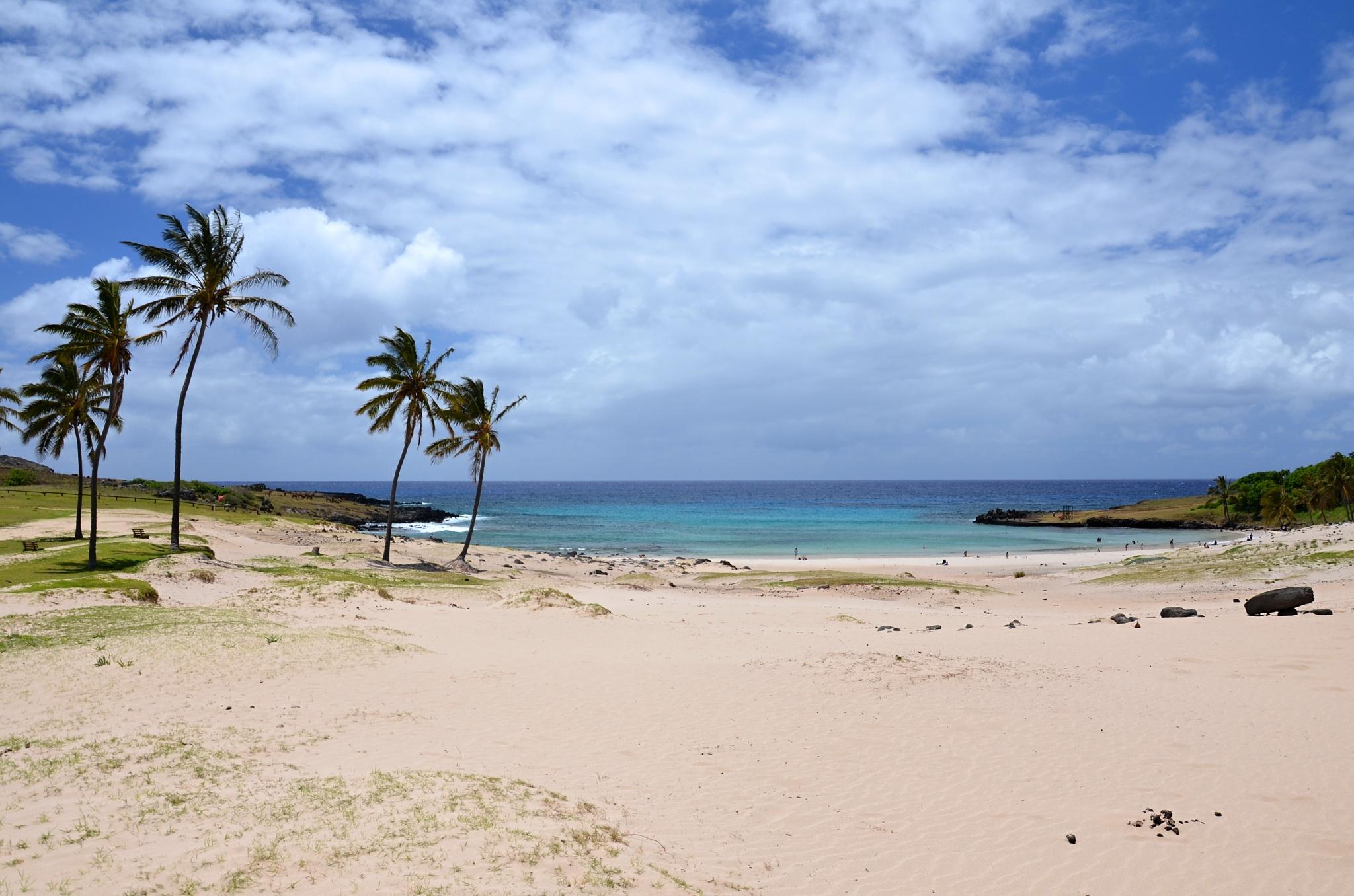 Korálová písčitá pláž u zátoky Anakena