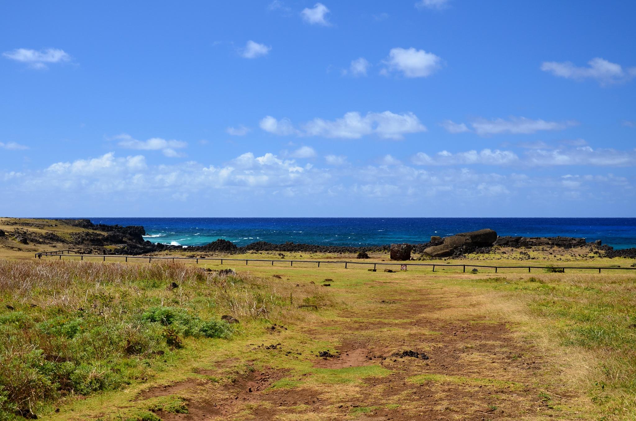 Blížíme se k plošině Ahu Te Pito Kura a největší Moai zvané Parro