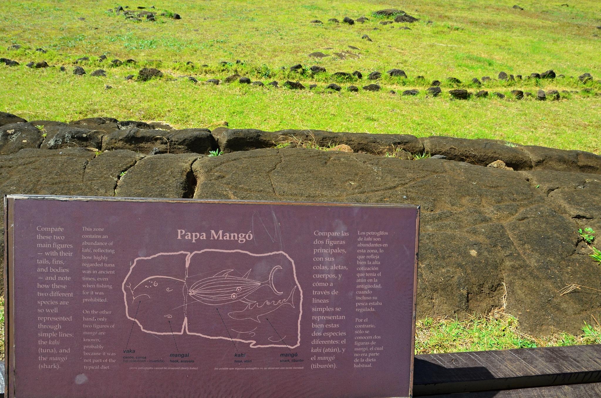 Petroglyfy na místě Papa Vaka i s popiskem