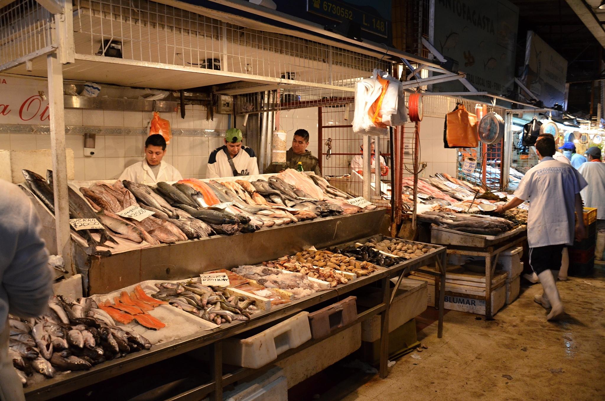 Rybí trh