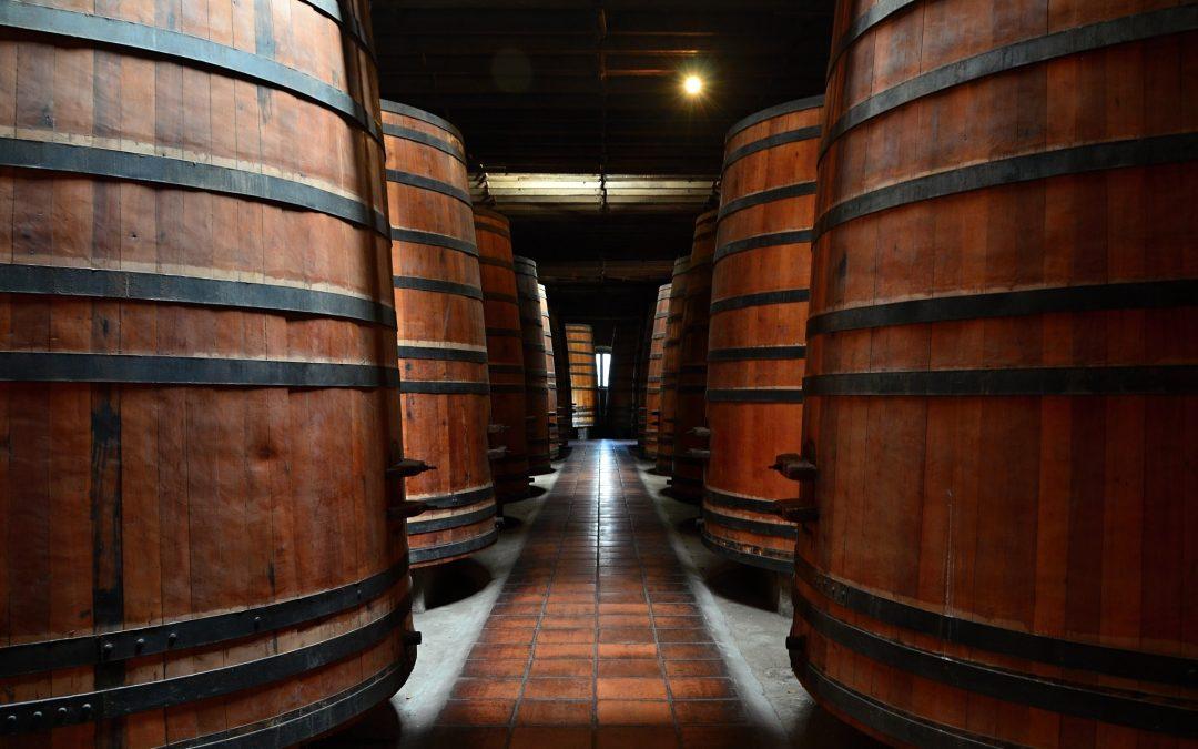 Prohlídka vinice Cousiño Macul, odlet a cesta zpět