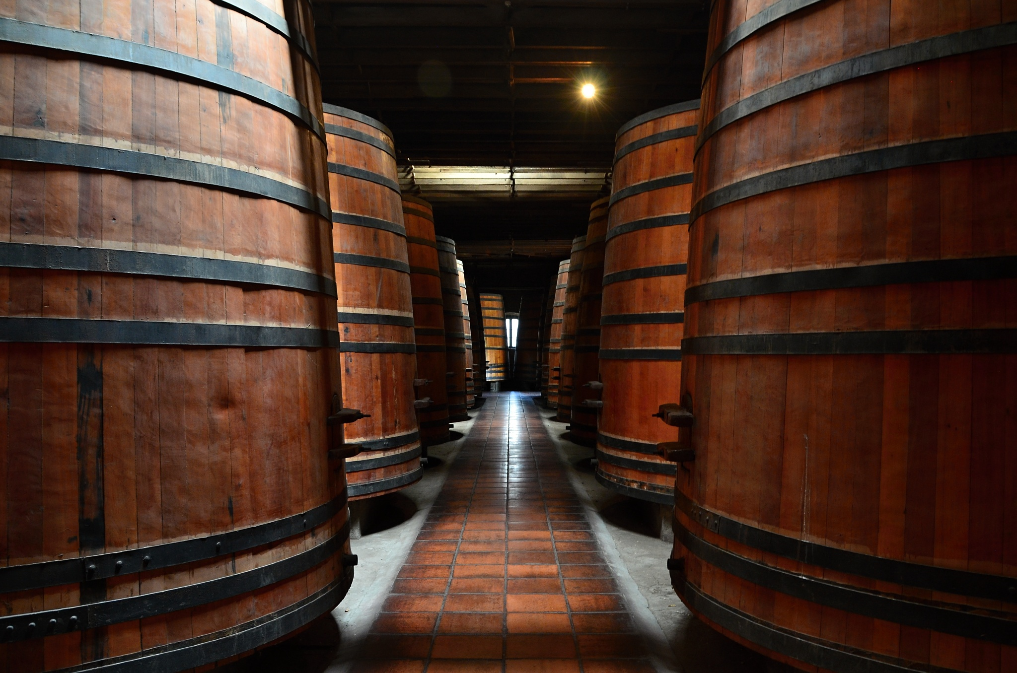 Obrovské sudy na víno ve sklepeních vinařství