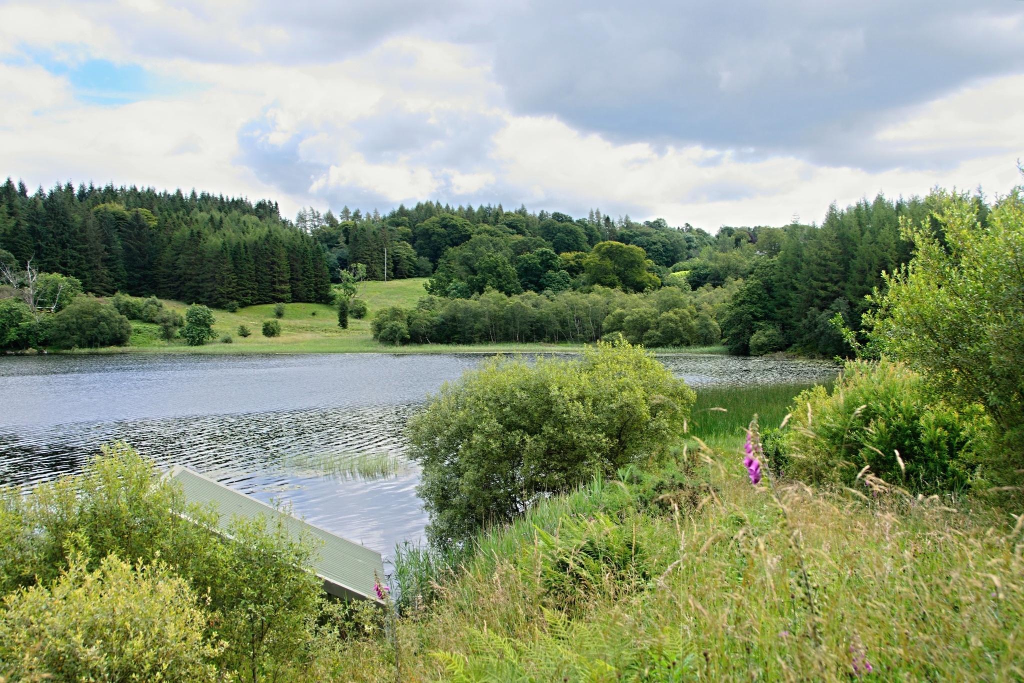 Vypadá to jako malý rybník, ale je to malé jezero Craigallian