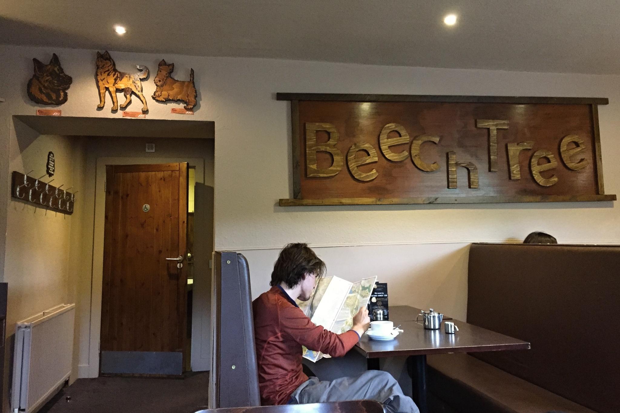 Chvilka odpočinku v hotelu Beech Tree. Venku pro změnu leje jak z konve.