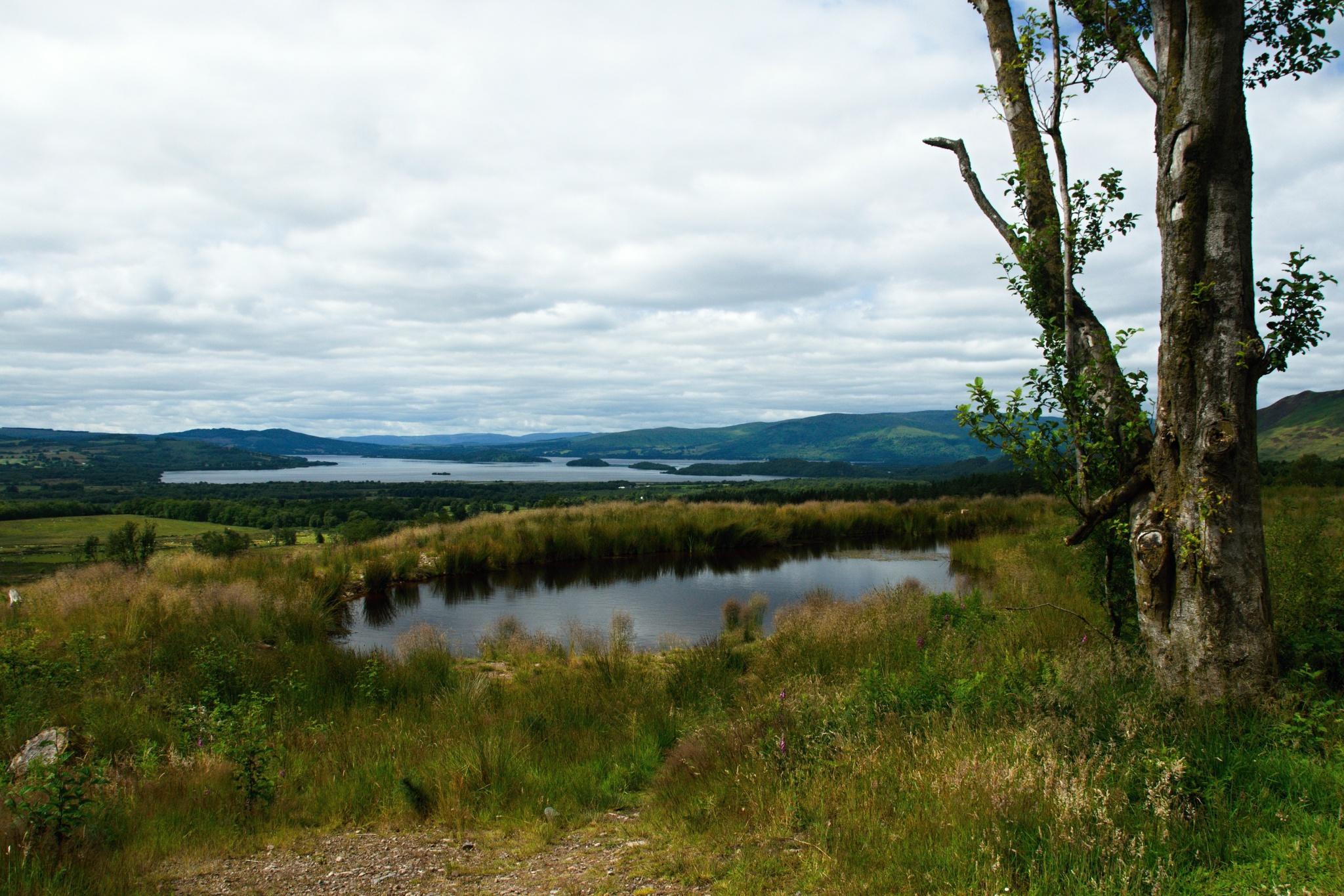 Jezero Loch Lomond na obzoru