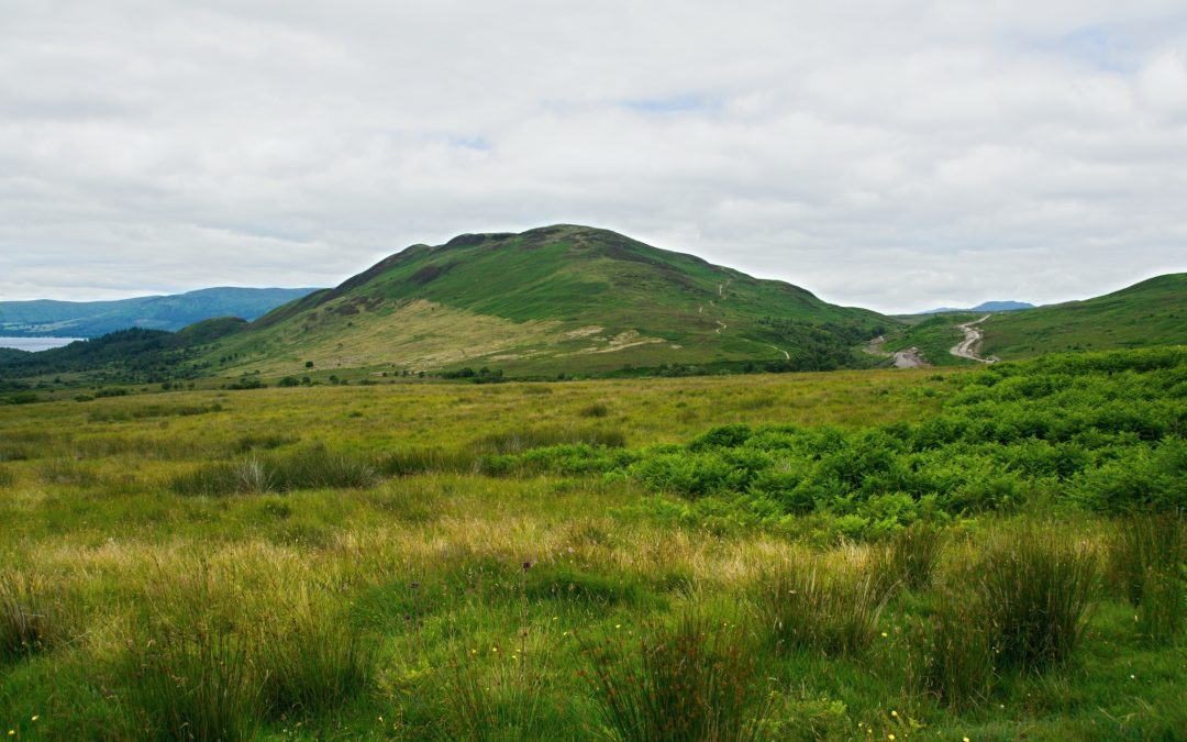 Kopeček Conic Hill a jezero Lochmond (Drymen – Sallochy, WHW den 2.)